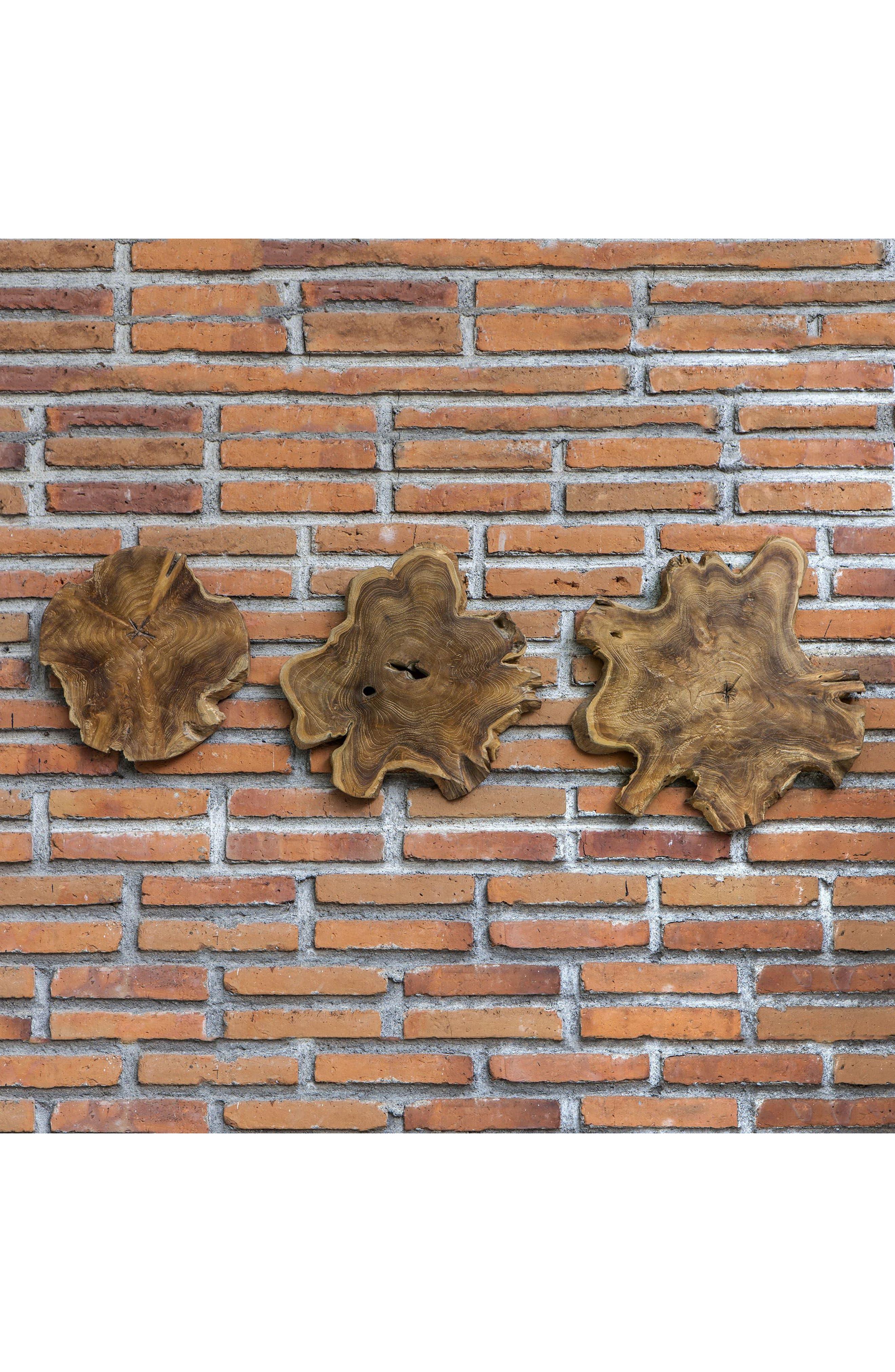 Kalani Set of 3 Wood Decorations,                             Alternate thumbnail 2, color,                             BROWN