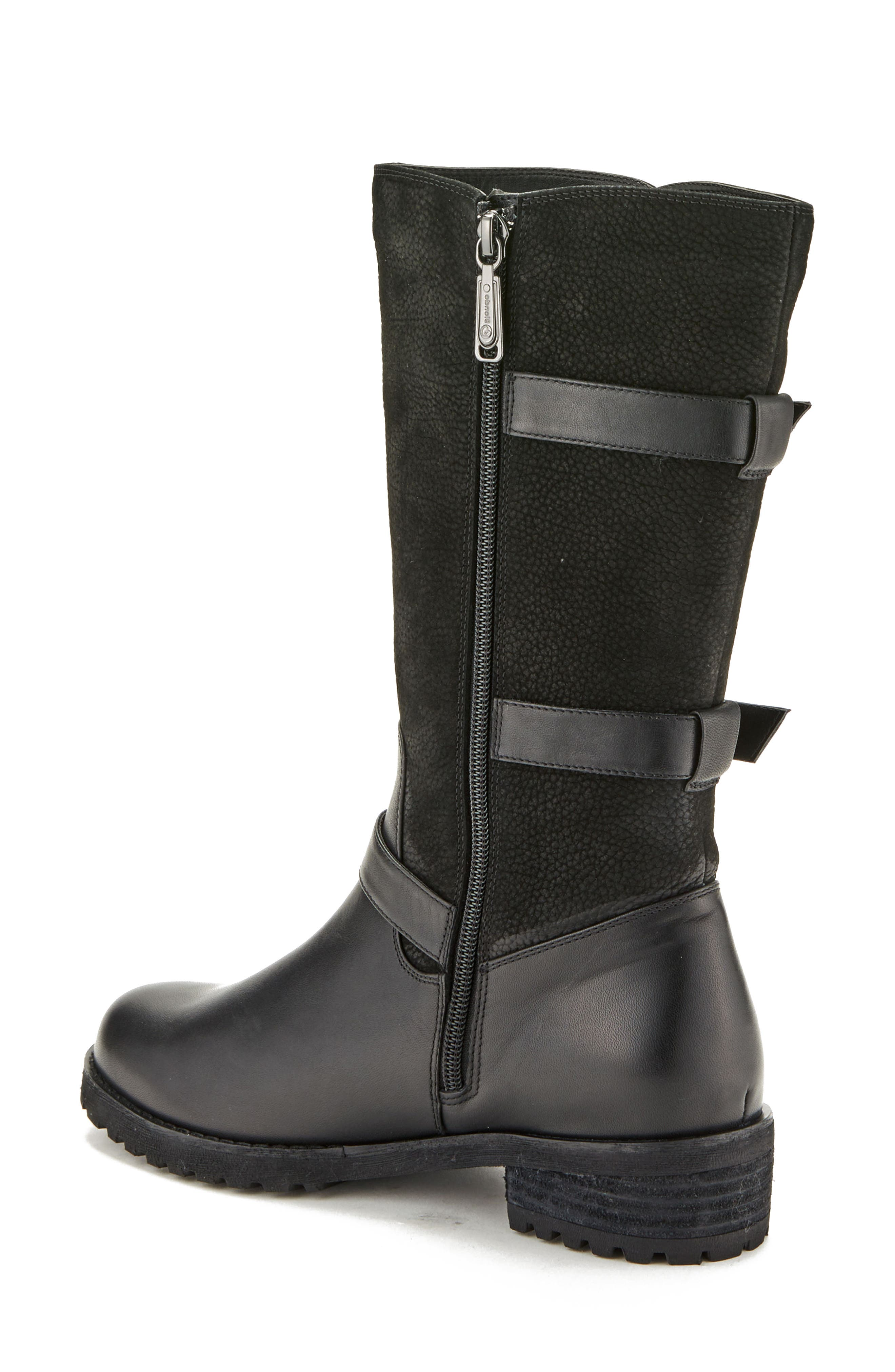 Lenie Waterproof Moto Boot,                             Alternate thumbnail 2, color,                             BLACK LEATHER