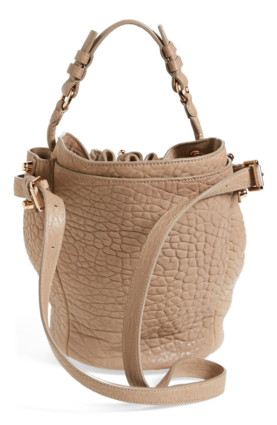 'Small Diego - Rose Gold' Leather Bucket Bag,                             Alternate thumbnail 4, color,                             250