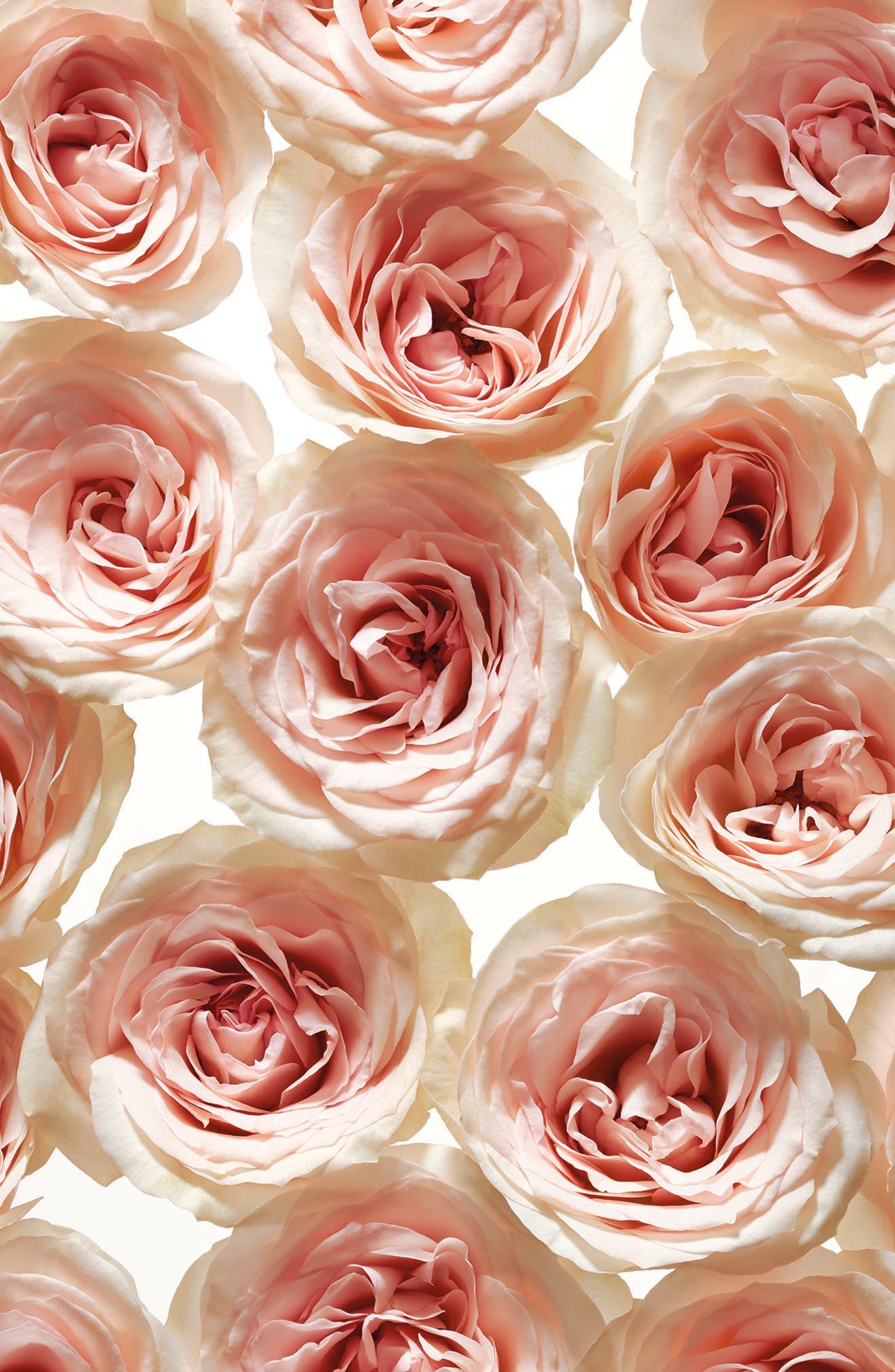 Jolie Fleur - Rose Eau de Parfum Spray,                             Alternate thumbnail 3, color,                             NO COLOR