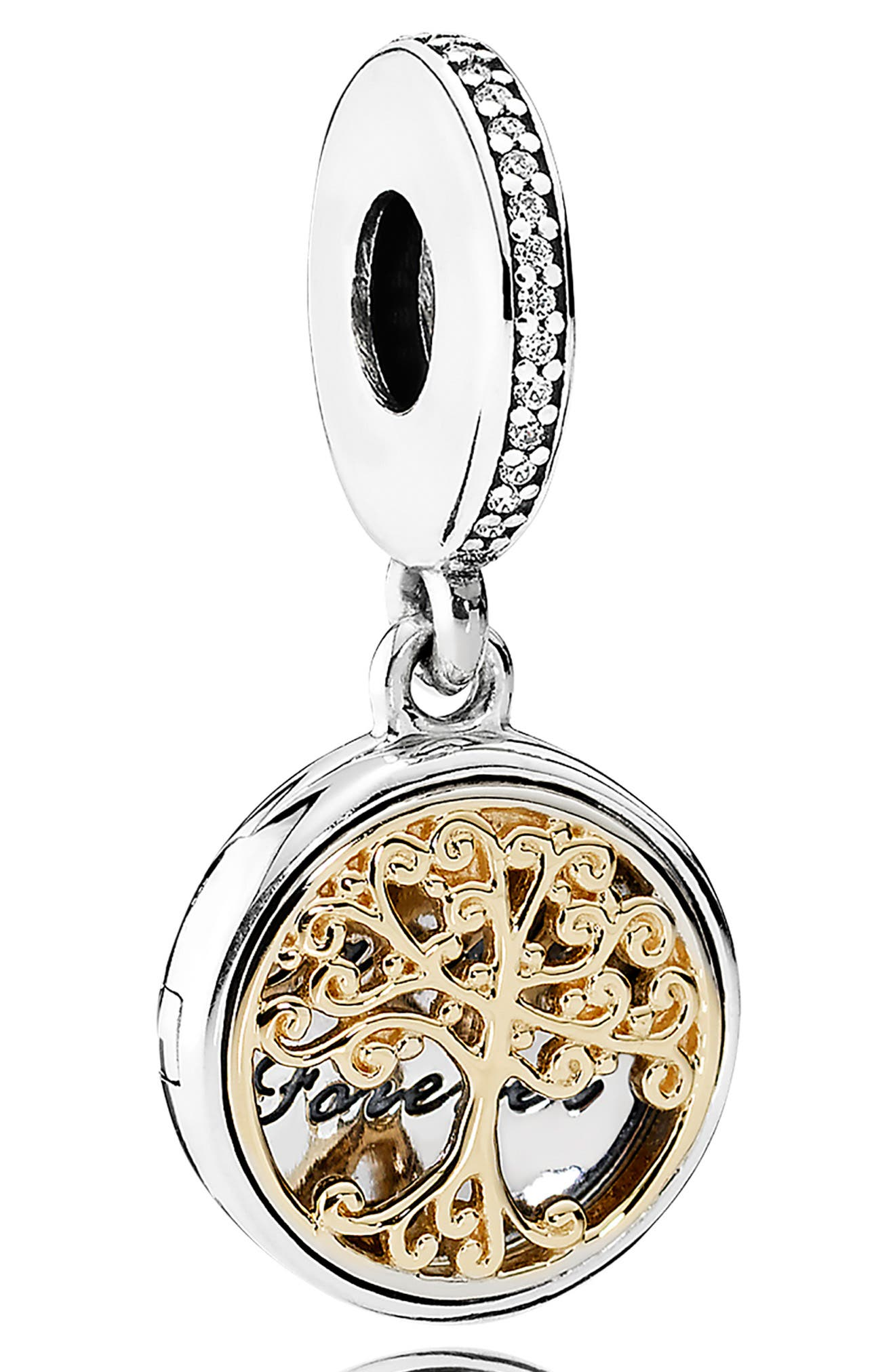 Family Roots Locket Dangle Charm,                         Main,                         color, SILVER