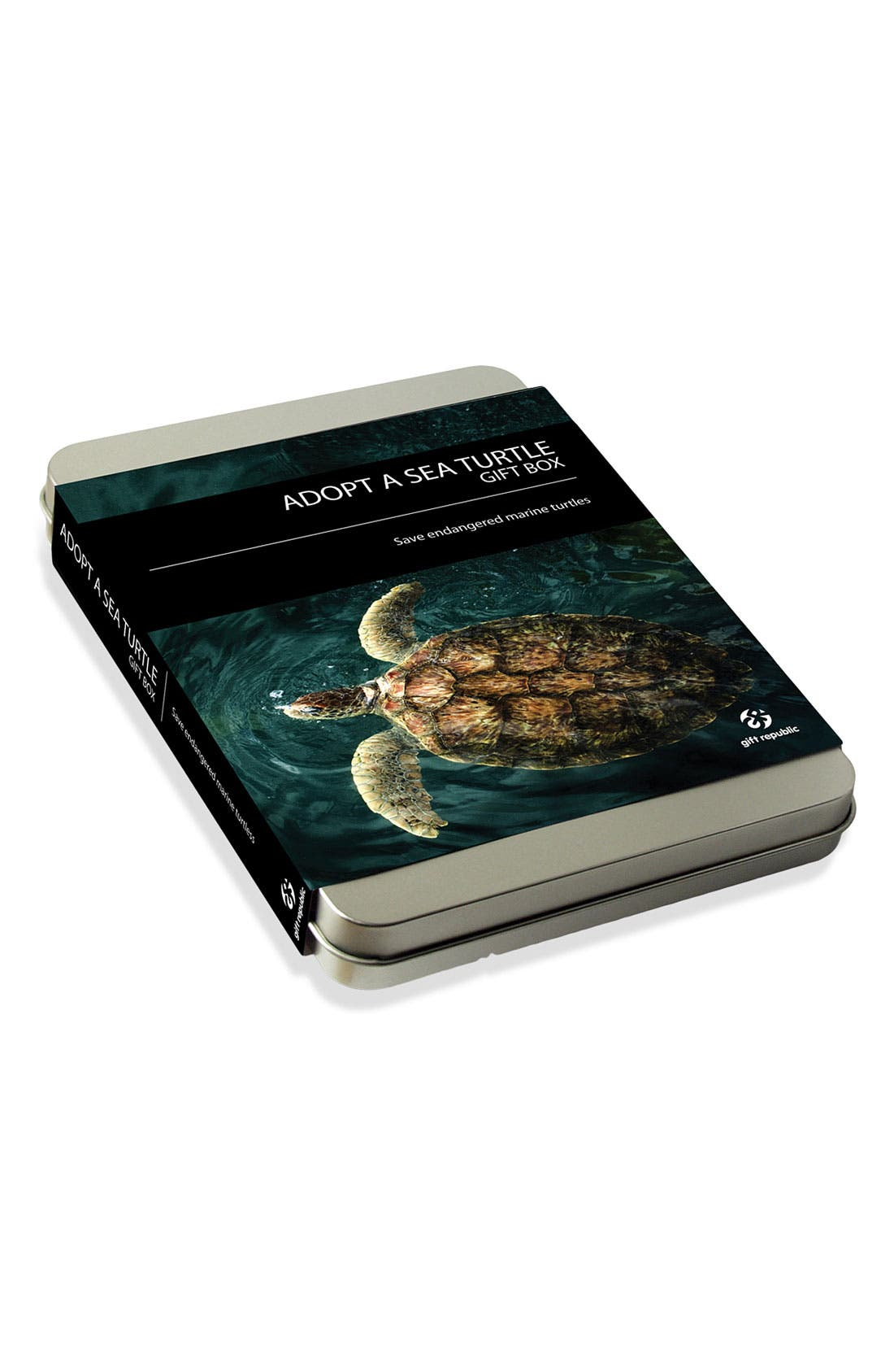 'Adopt a Sea Turtle' Gift Box,                             Main thumbnail 1, color,                             000