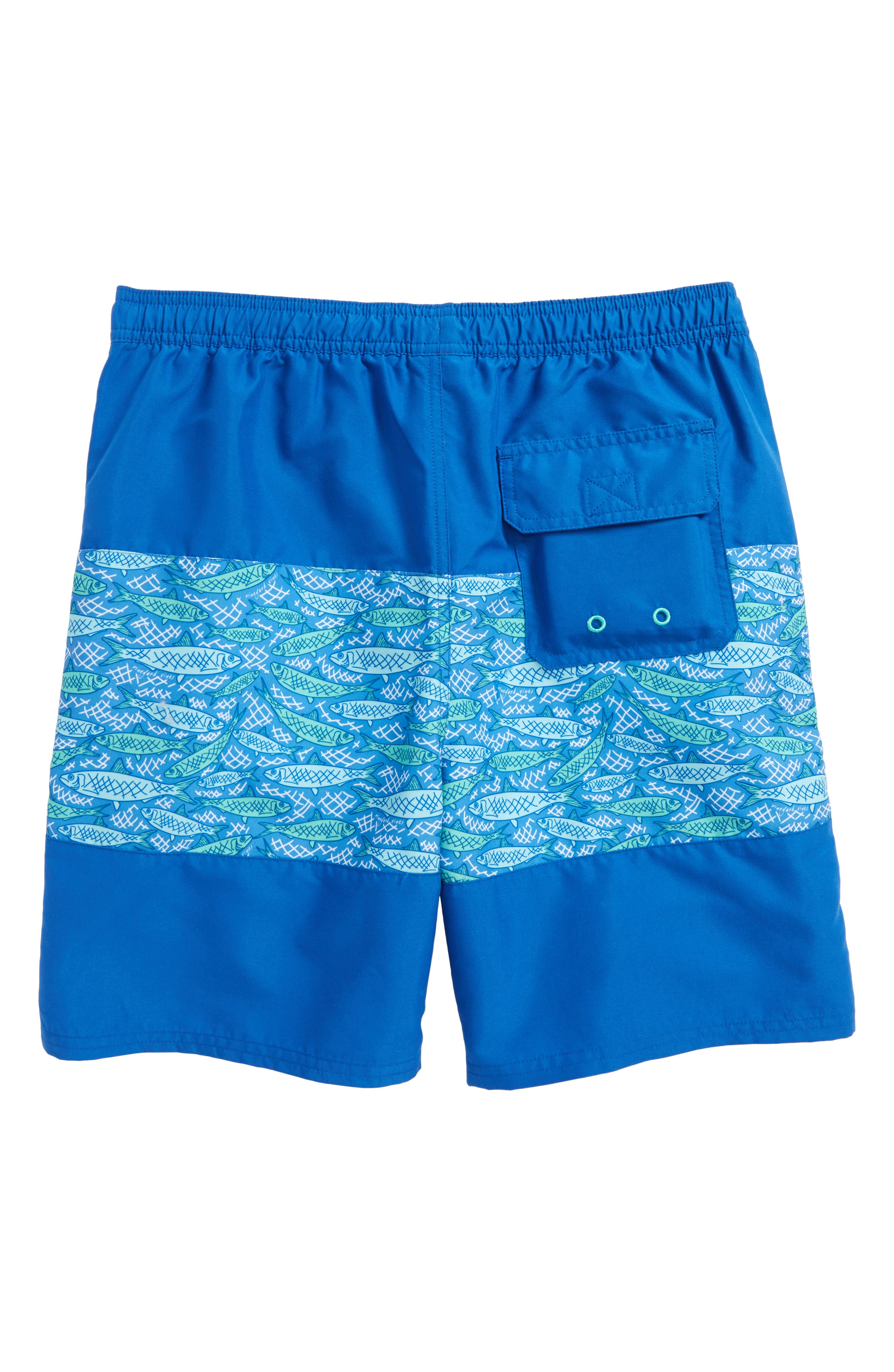 Fish Scale Chappy Swim Trunks,                             Alternate thumbnail 2, color,