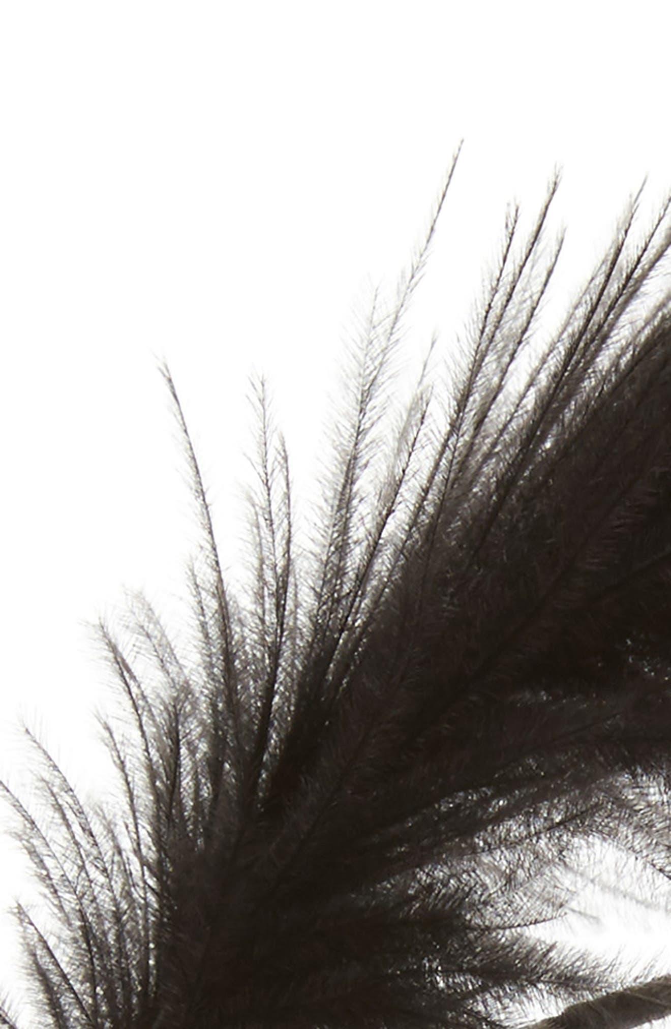 Feather Headband,                             Alternate thumbnail 2, color,                             001
