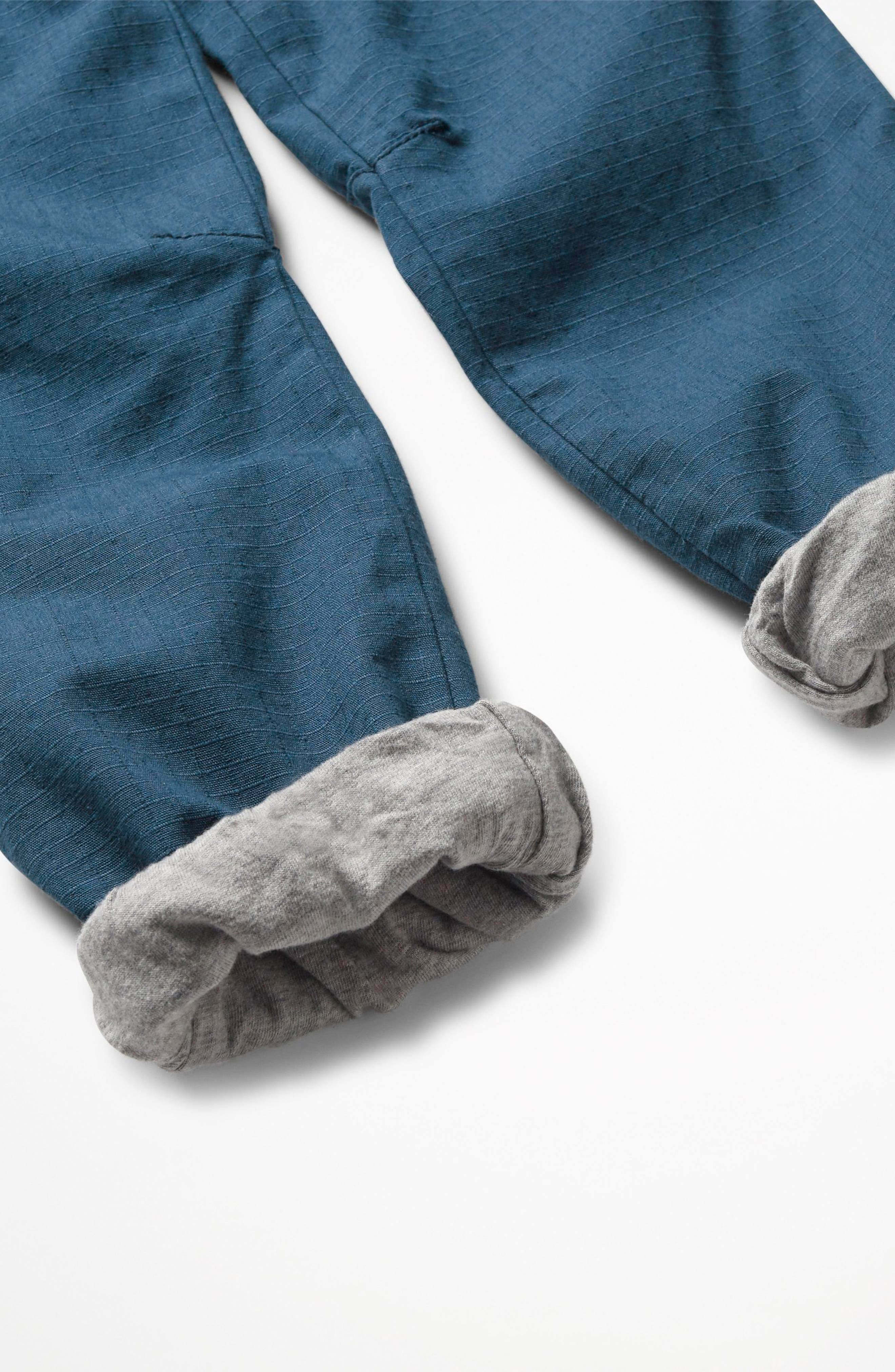 Lined Sweatpants,                             Alternate thumbnail 3, color,