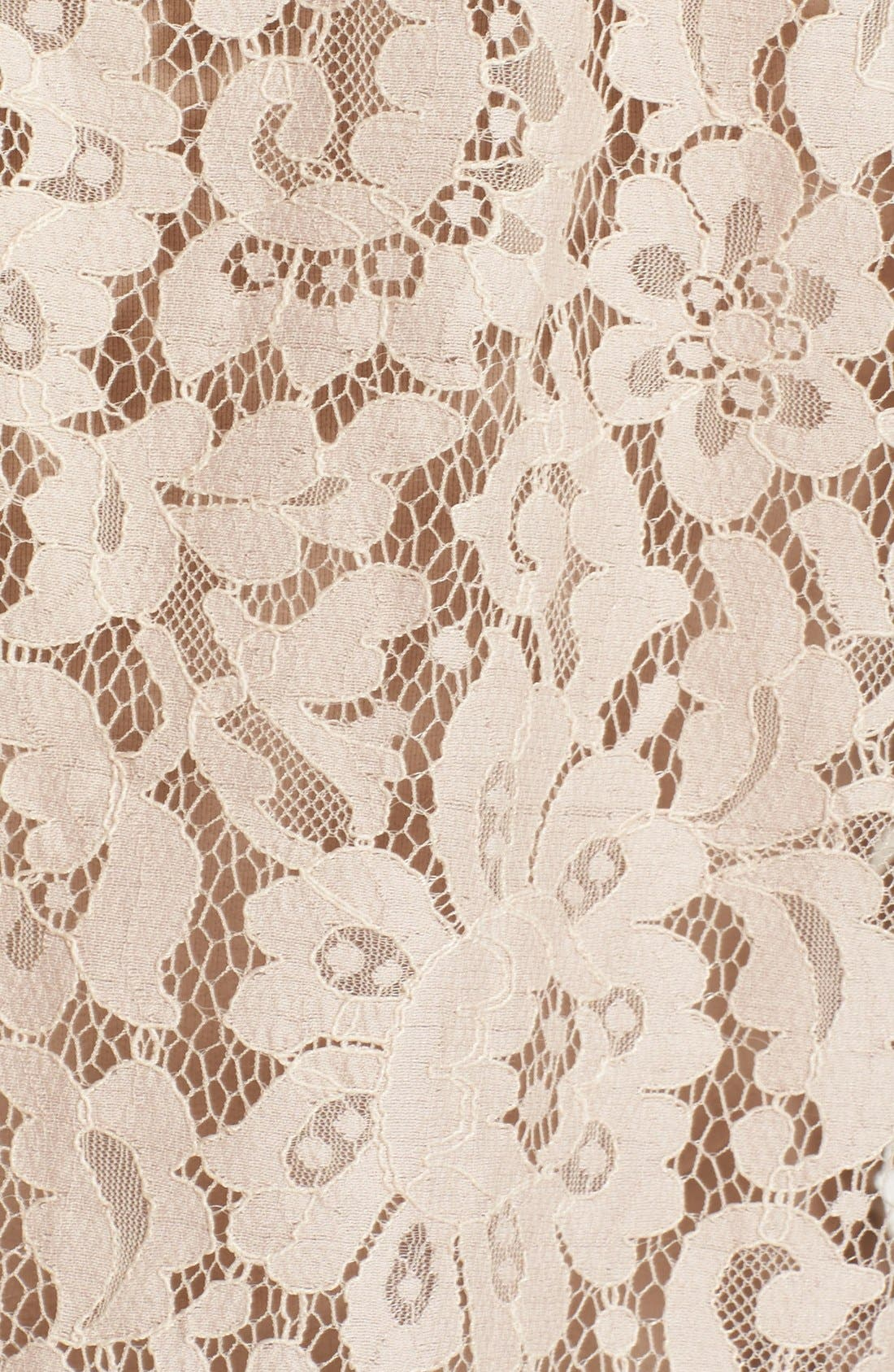 'Fanny' Sheer Lace Top,                             Alternate thumbnail 6, color,                             650