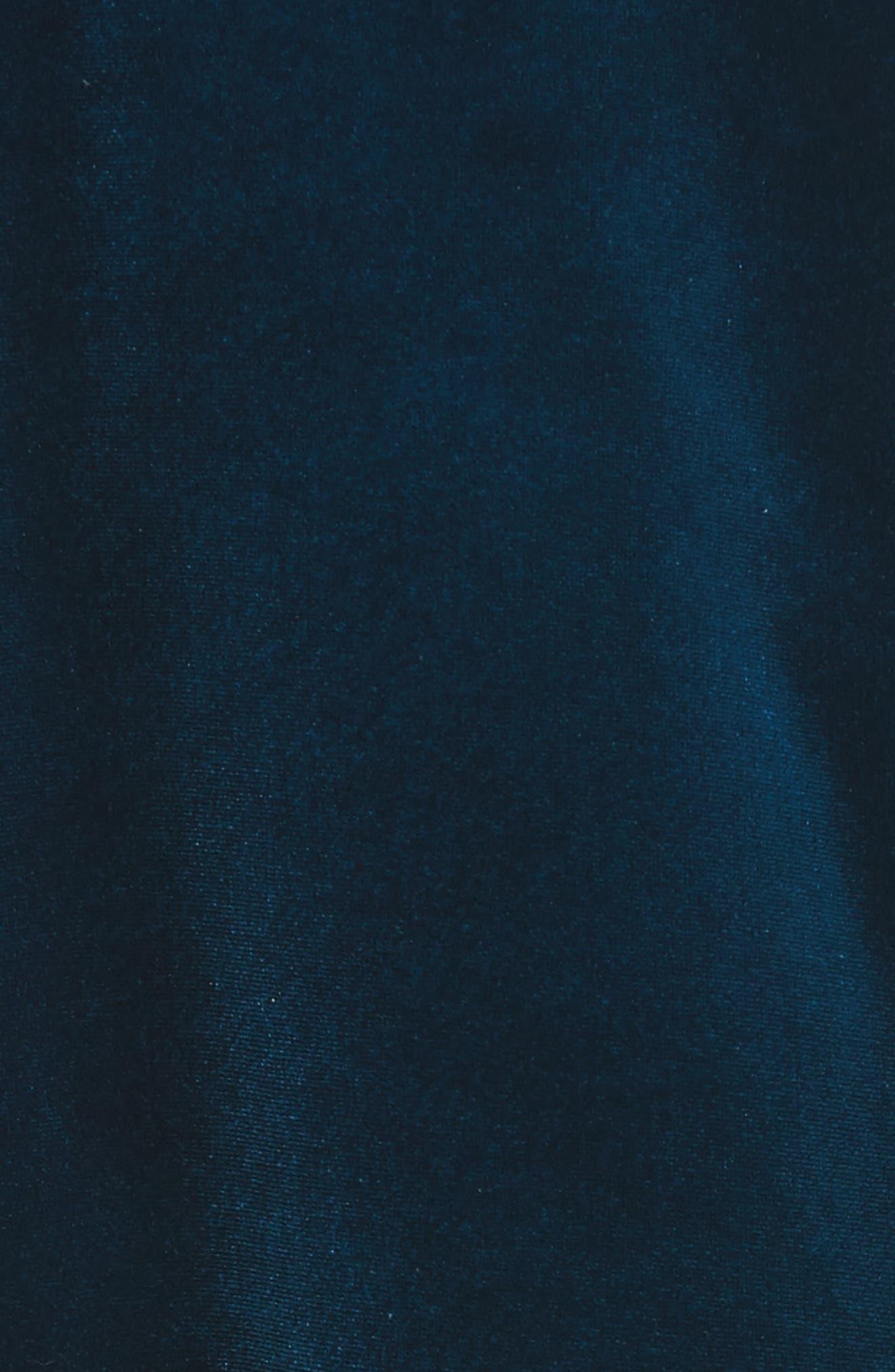 Velvet Blazer,                             Alternate thumbnail 6, color,                             400