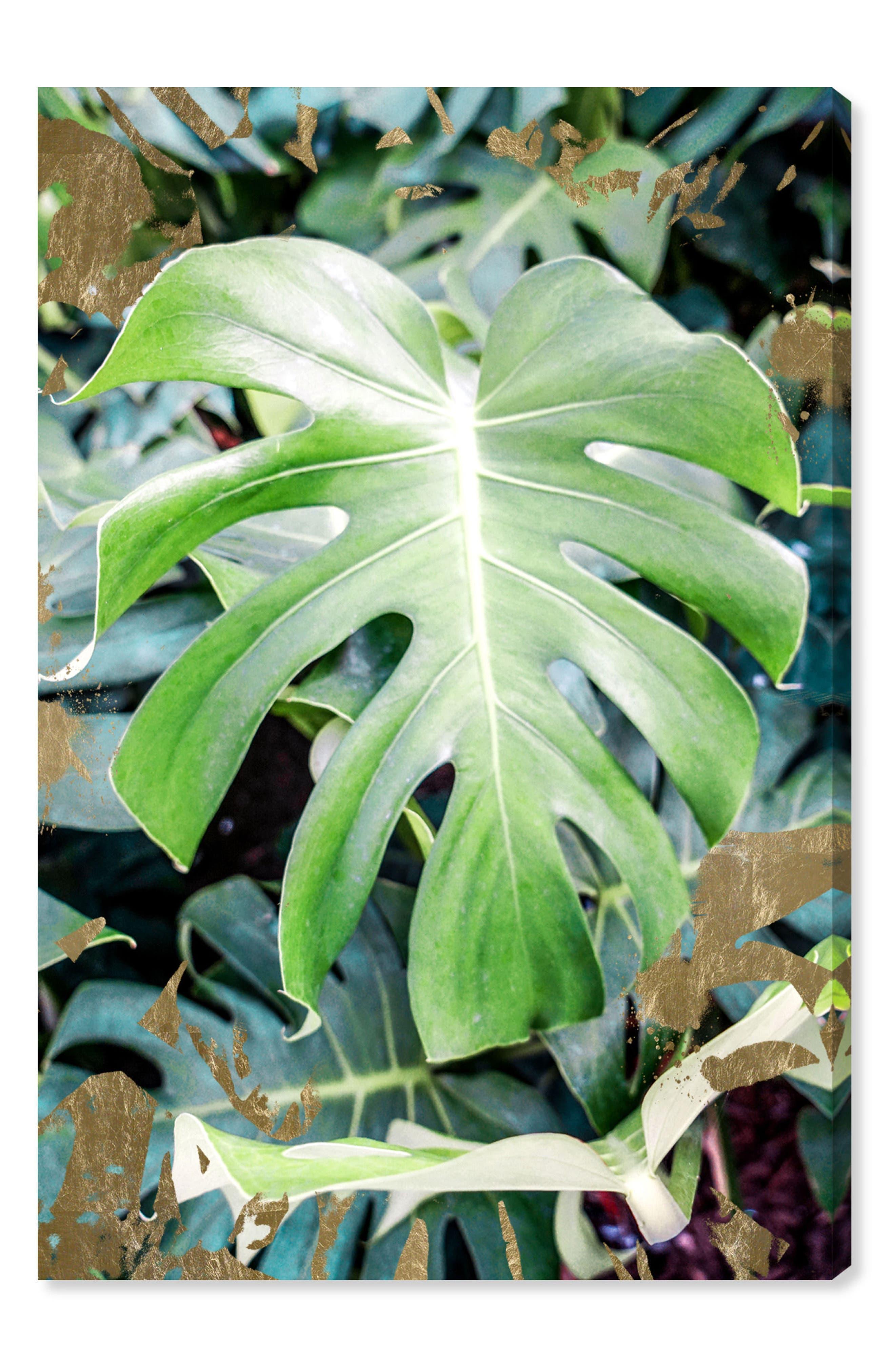Monstera Jungle Canvas Wall Art,                             Main thumbnail 1, color,                             GREEN