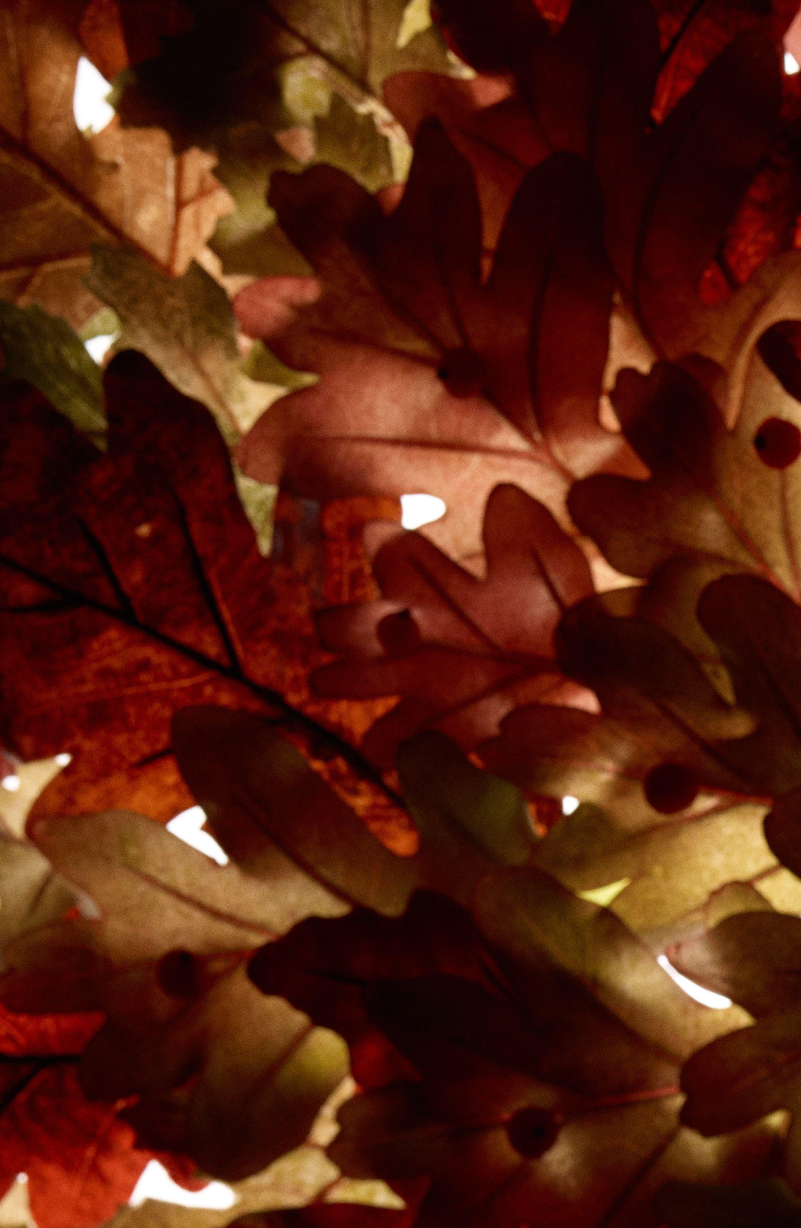 English Oak & Hazelnut Cologne,                             Alternate thumbnail 4, color,                             NO COLOR