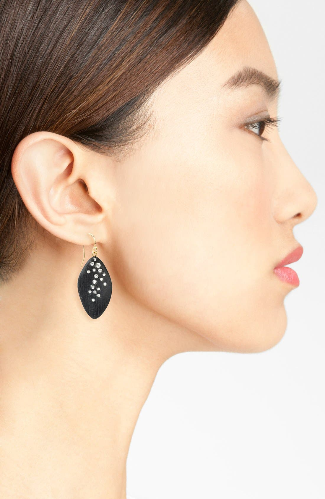 ALEXIS BITTAR,                             'Lucite<sup>®</sup> - Dust' Long Leaf Statement Earrings,                             Alternate thumbnail 2, color,                             002
