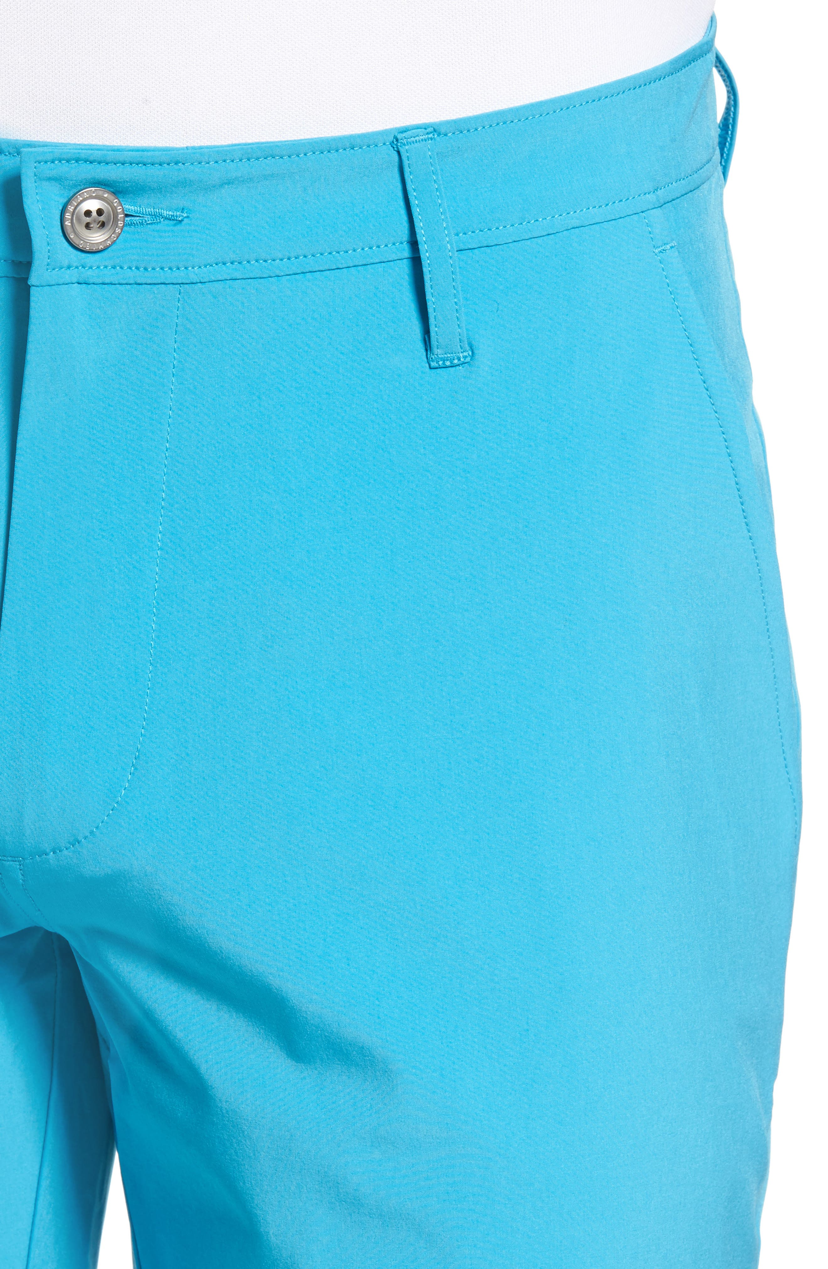Canyon Shorts,                             Alternate thumbnail 4, color,                             454