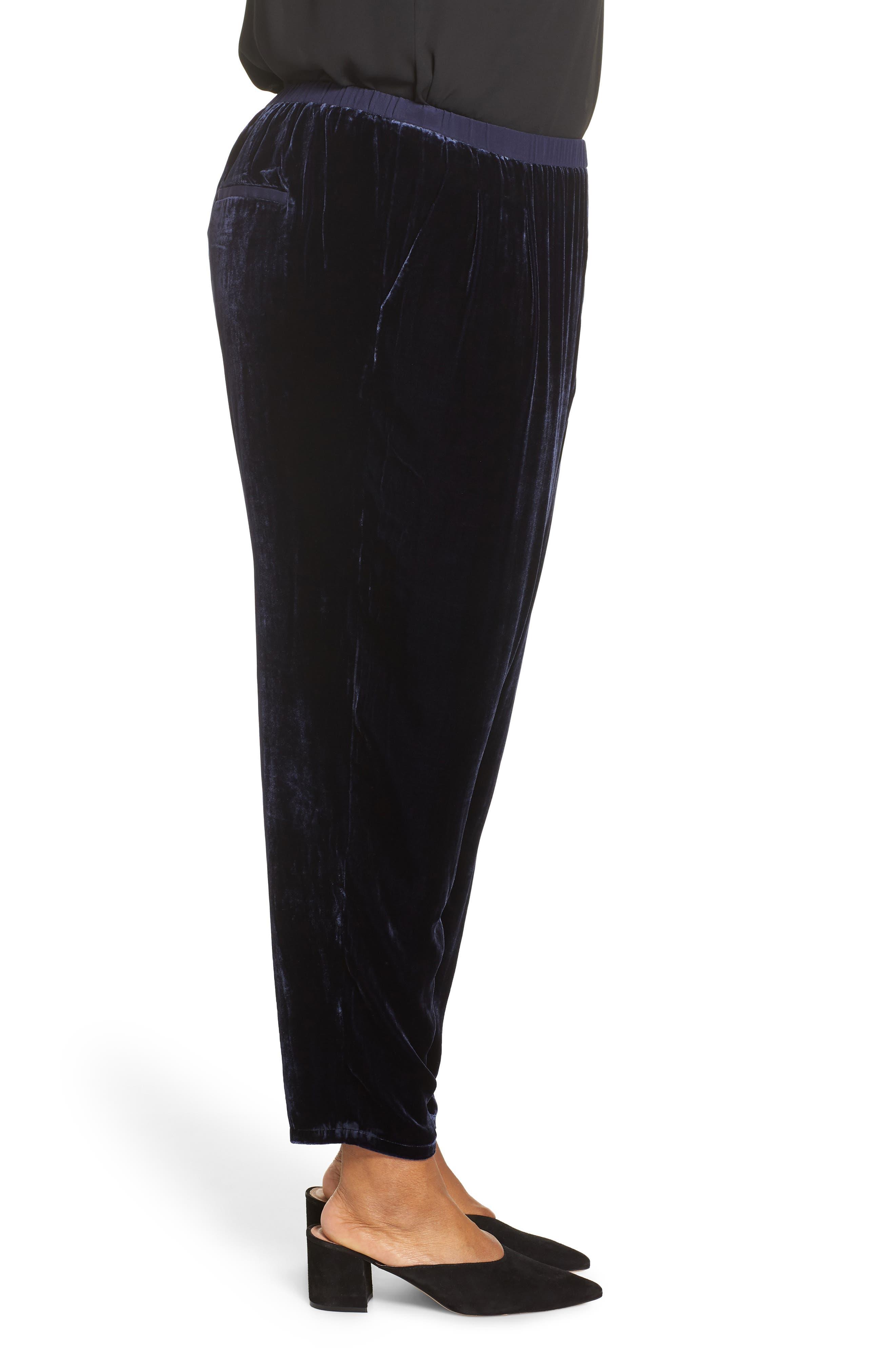 High Rise Velvet Ankle Pants,                             Alternate thumbnail 3, color,                             419