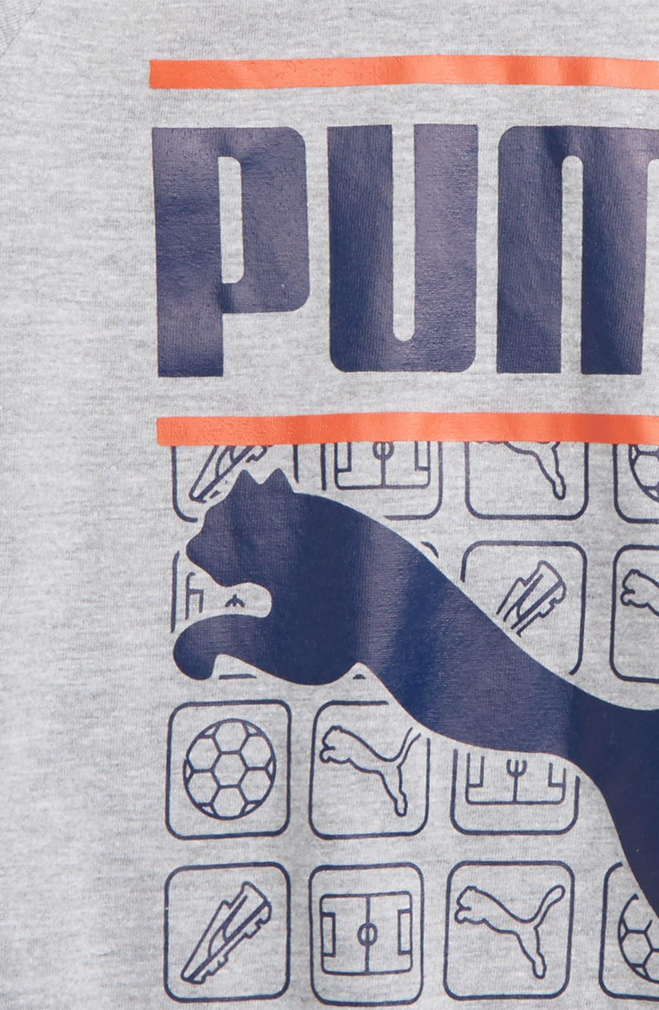 Graphic Raglan T-Shirt,                             Alternate thumbnail 2, color,                             078