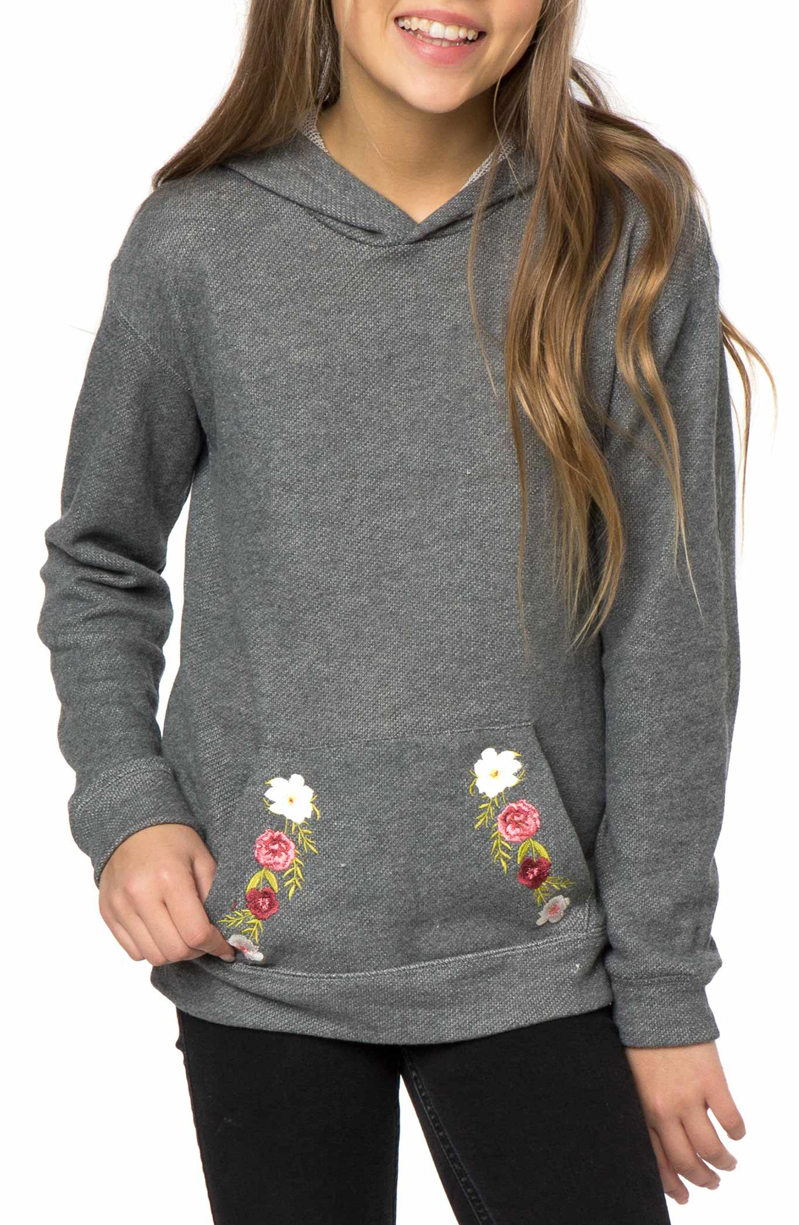 Brianna Pullover Hoodie,                         Main,                         color,