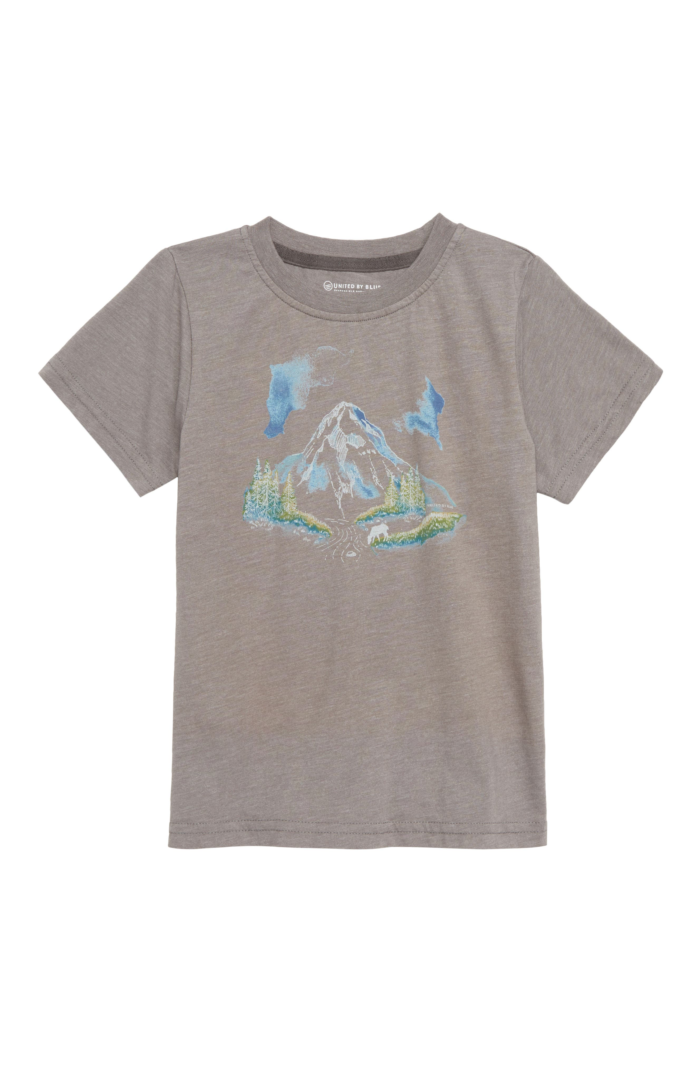 River Mountain T-Shirt,                         Main,                         color, STEEL GREY