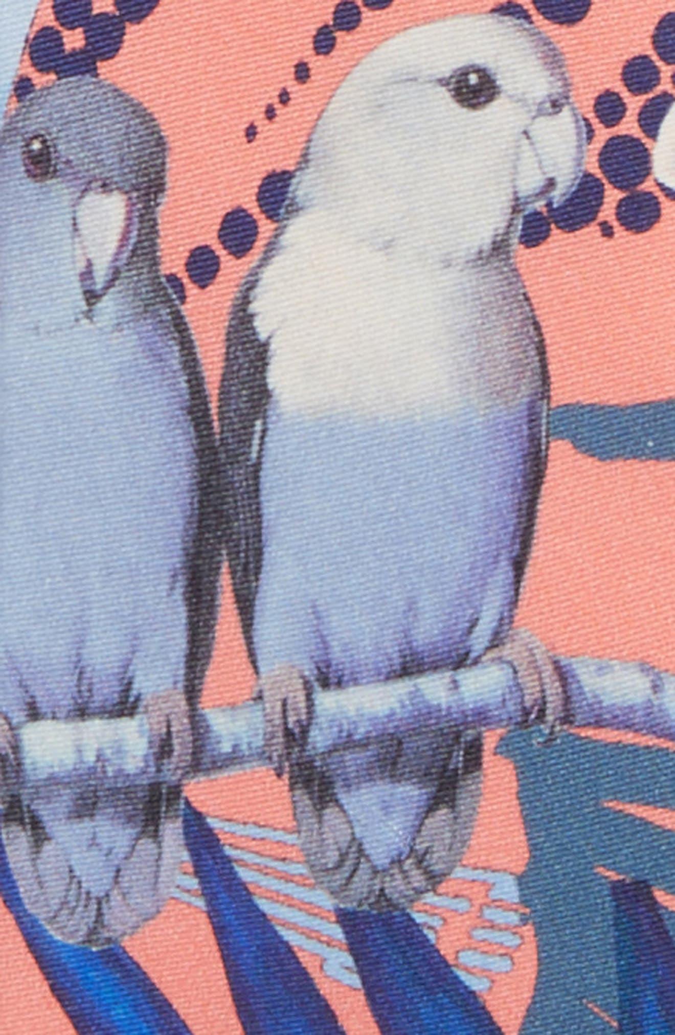 Parakeet Bay Print Silk Tie,                             Alternate thumbnail 2, color,                             800