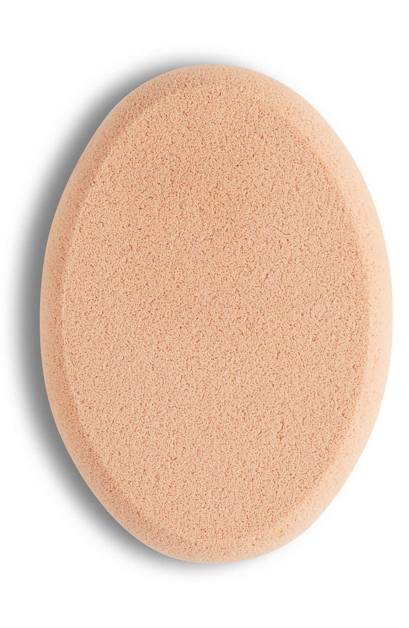 Professional Sponge,                         Main,                         color, 000
