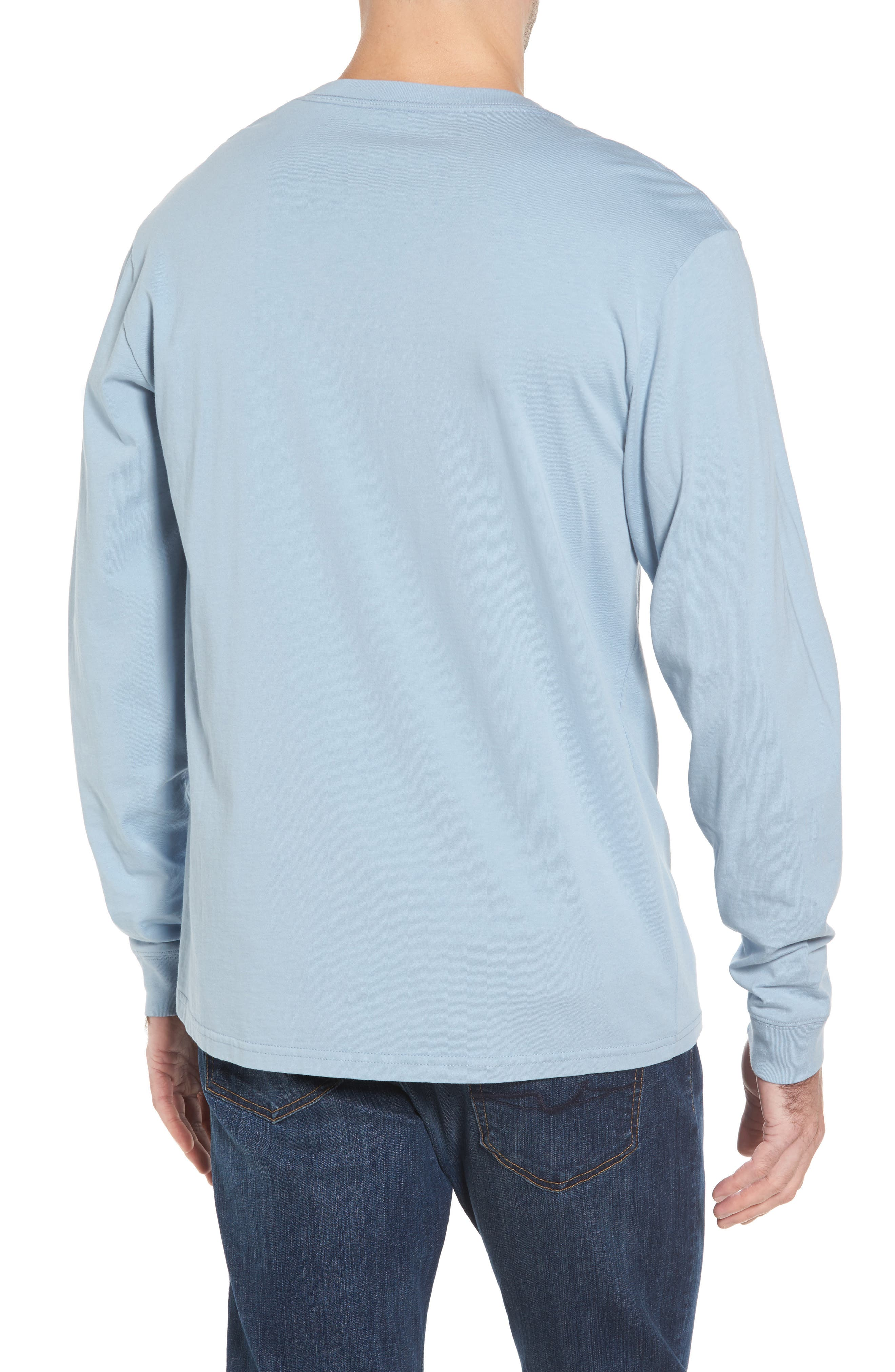Embroidered Long Sleeve T-Shirt,                             Alternate thumbnail 2, color,                             448