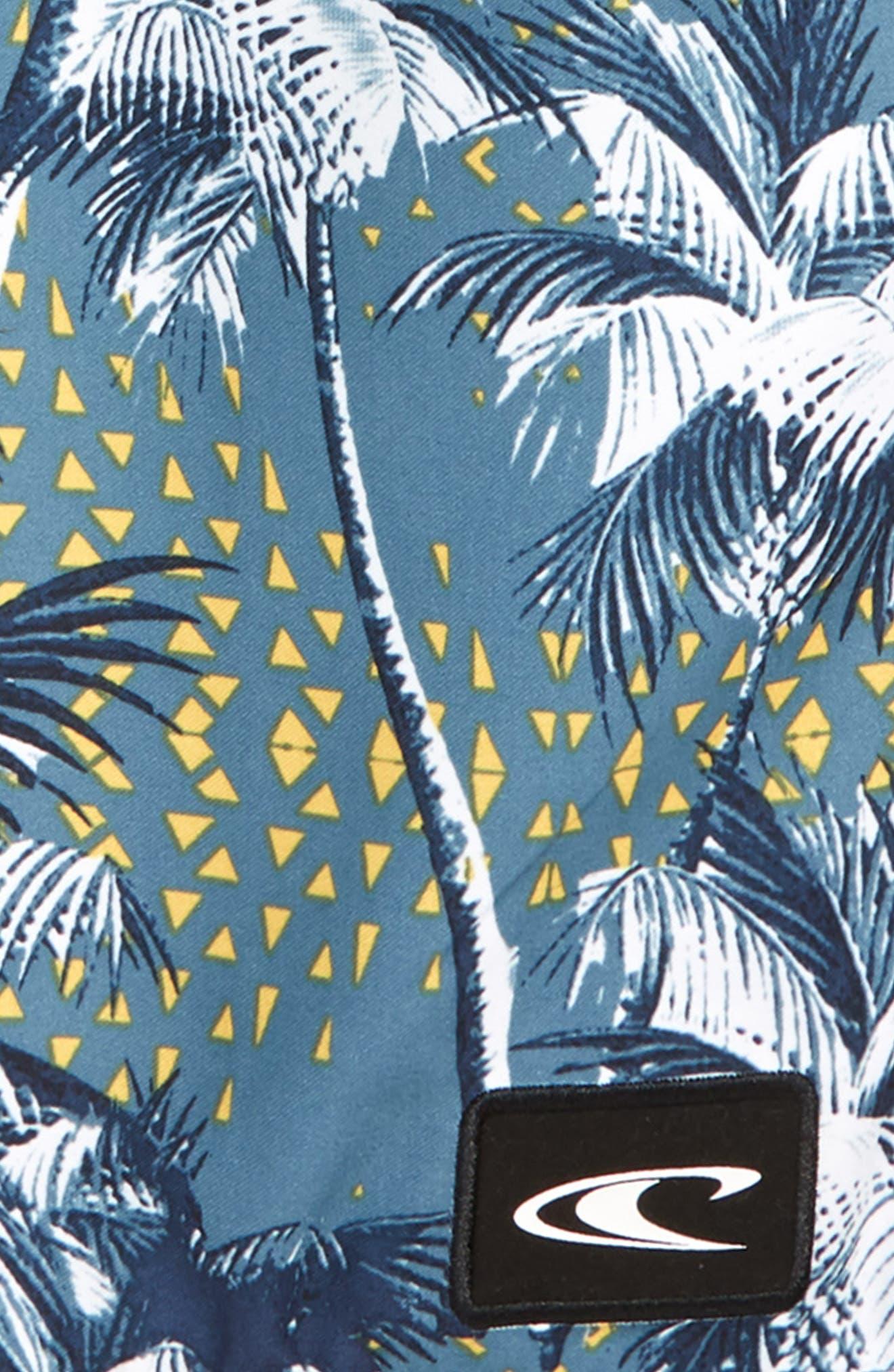Darn Old Palmer Board Shorts,                             Alternate thumbnail 2, color,                             404