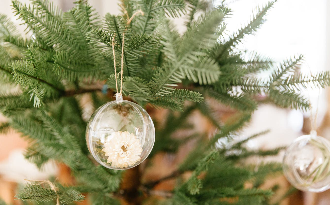 A clear round ornament with a white flower inside by Jenni Kayne.