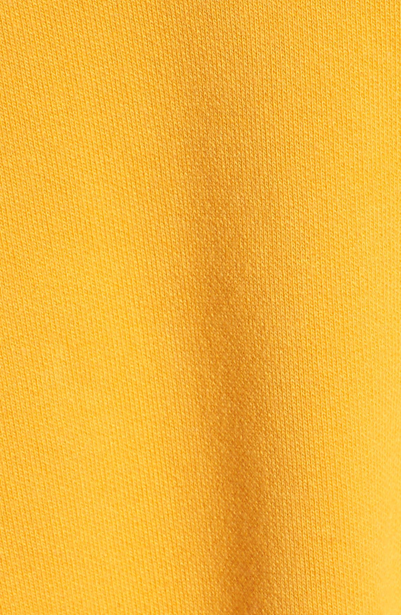 TJW Desert Vibes Tie Back Sweater,                             Alternate thumbnail 5, color,                             801