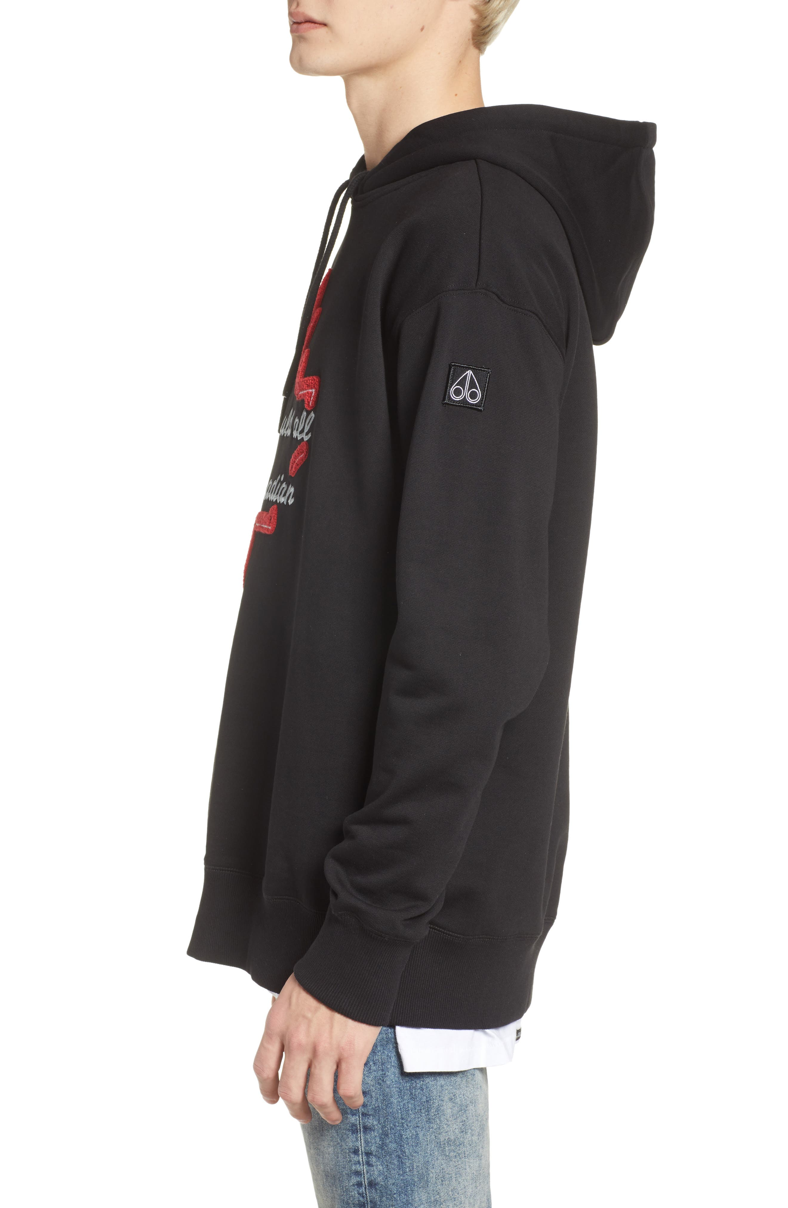 Northern Light Hoodie,                             Alternate thumbnail 3, color,                             001