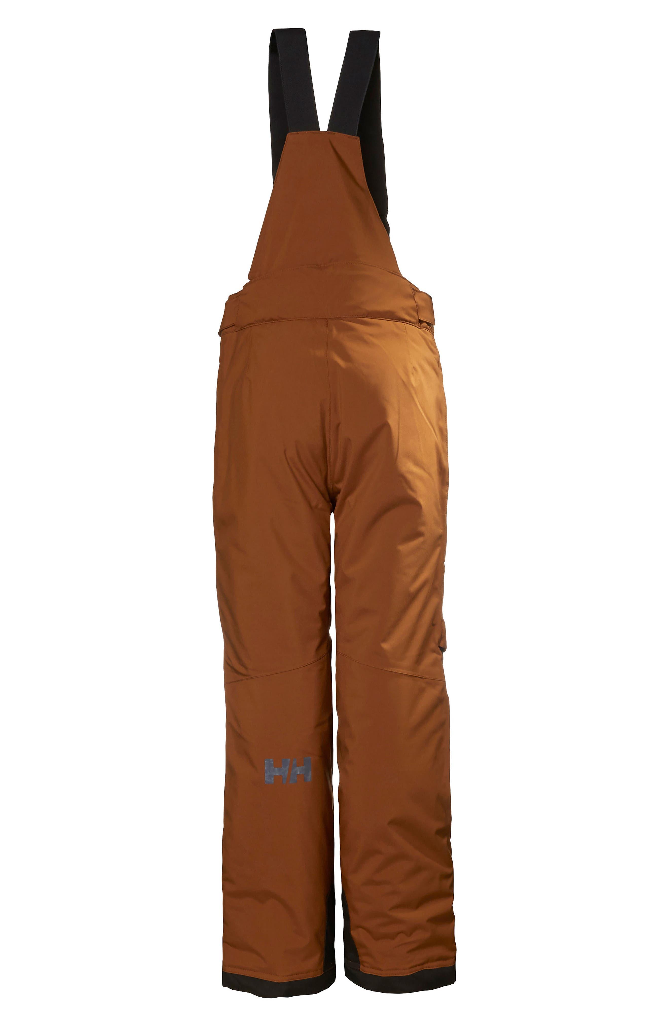 Jr. Powder Waterproof Ski Pants,                             Alternate thumbnail 2, color,                             201
