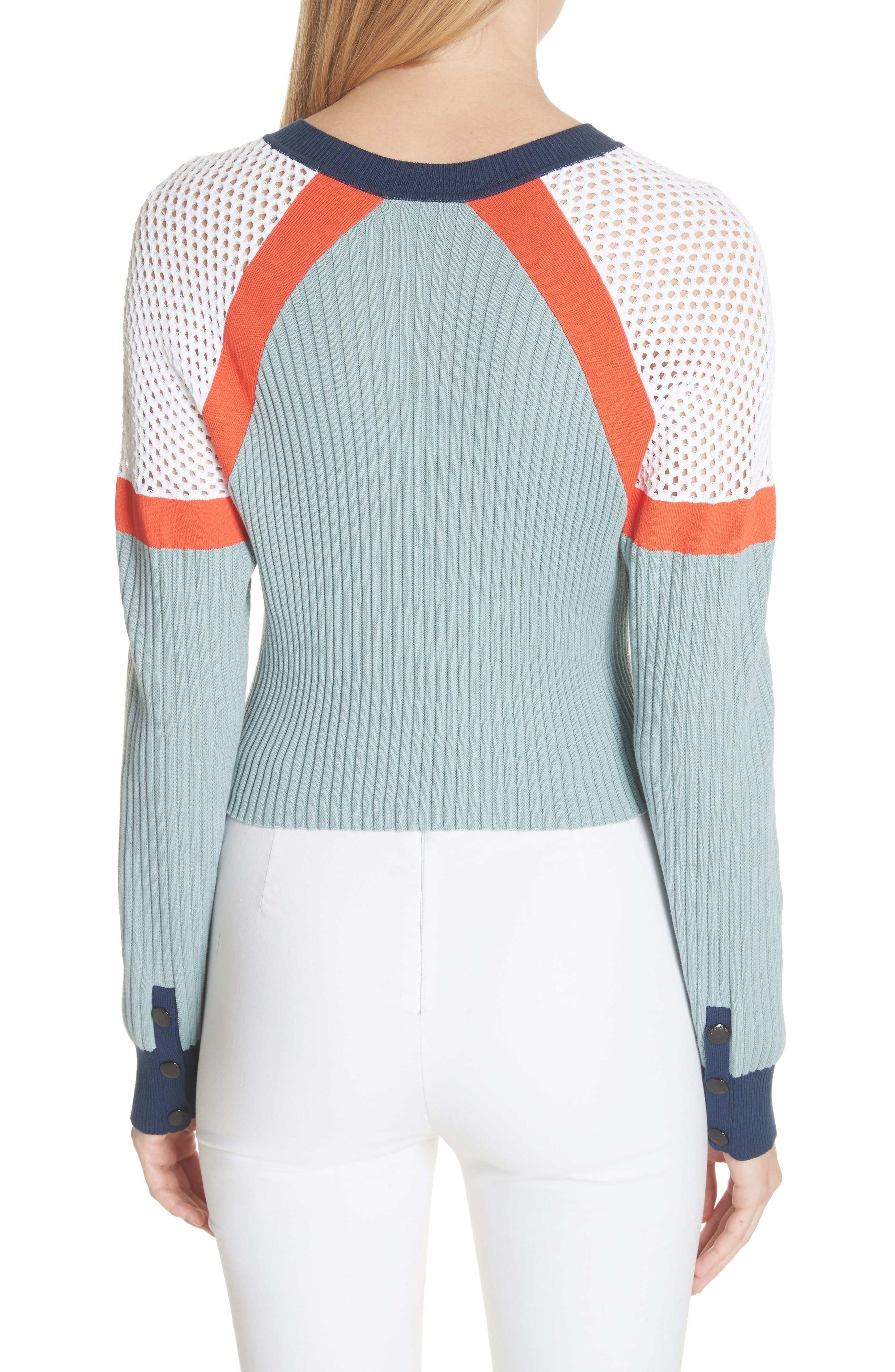 Lark Colorblock Crop Sweater,                             Alternate thumbnail 2, color,                             463