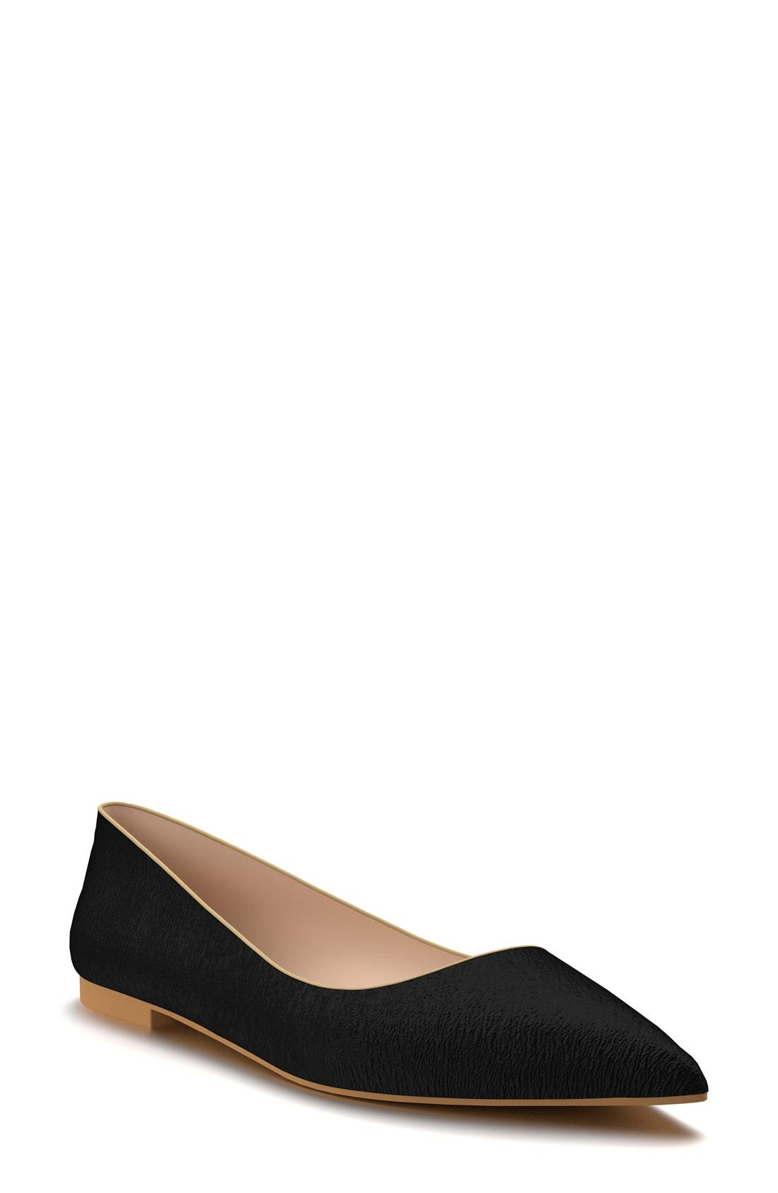 Pointy Toe Flat,                         Main,                         color, 001