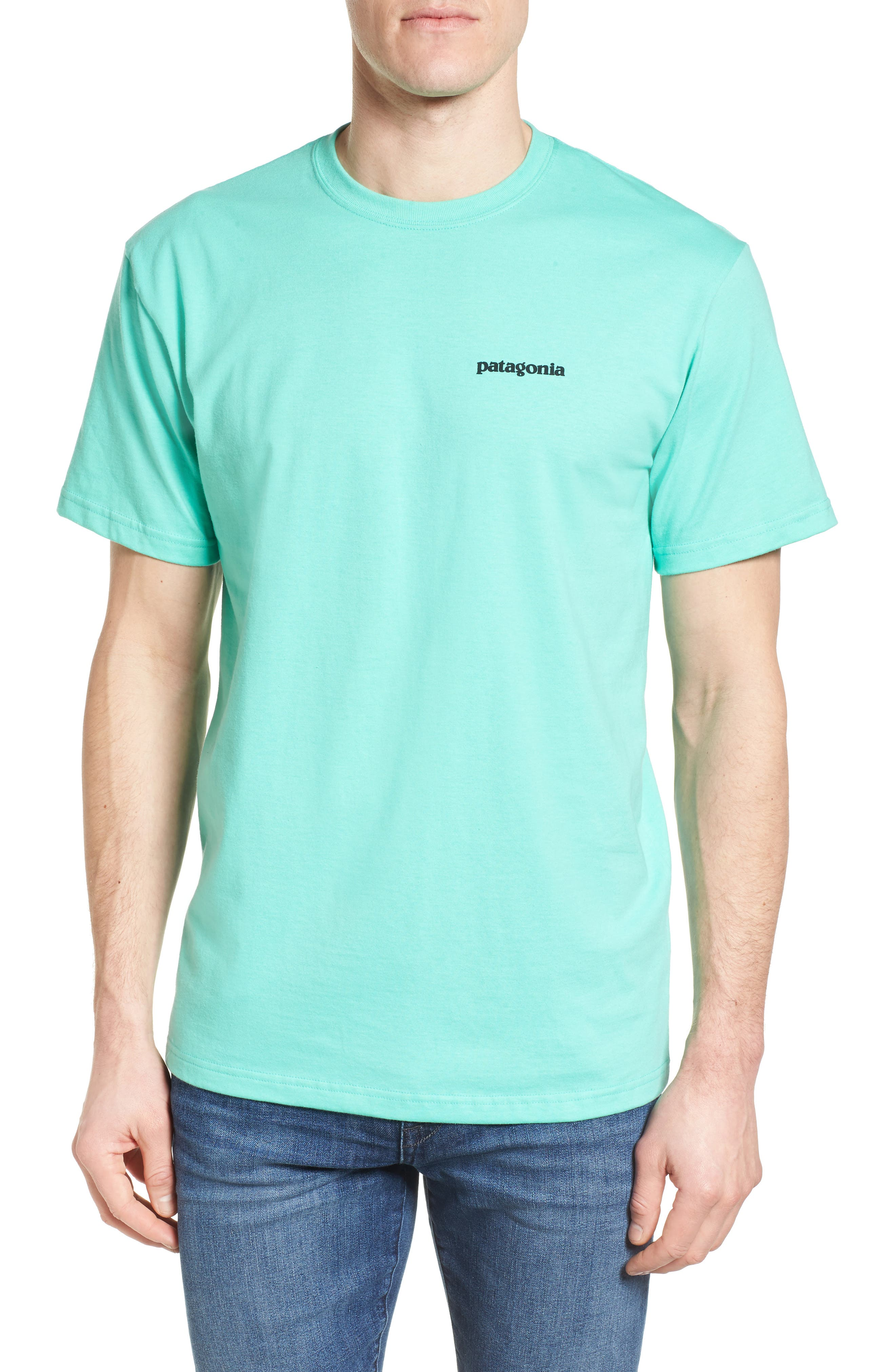 Fitz Roy Tarpon Regular Fit T-Shirt,                             Main thumbnail 2, color,