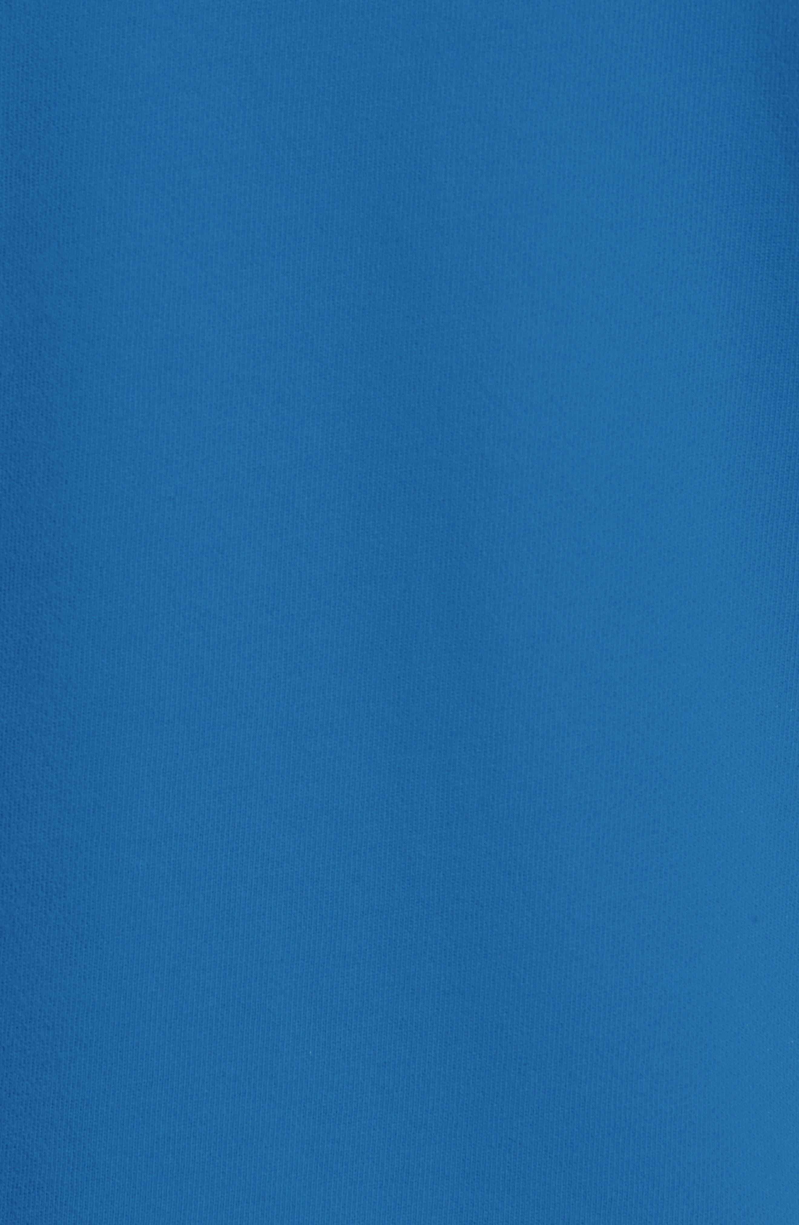 Trefoil Logo Pullover Hoodie,                             Alternate thumbnail 5, color,                             BLUEBIRD