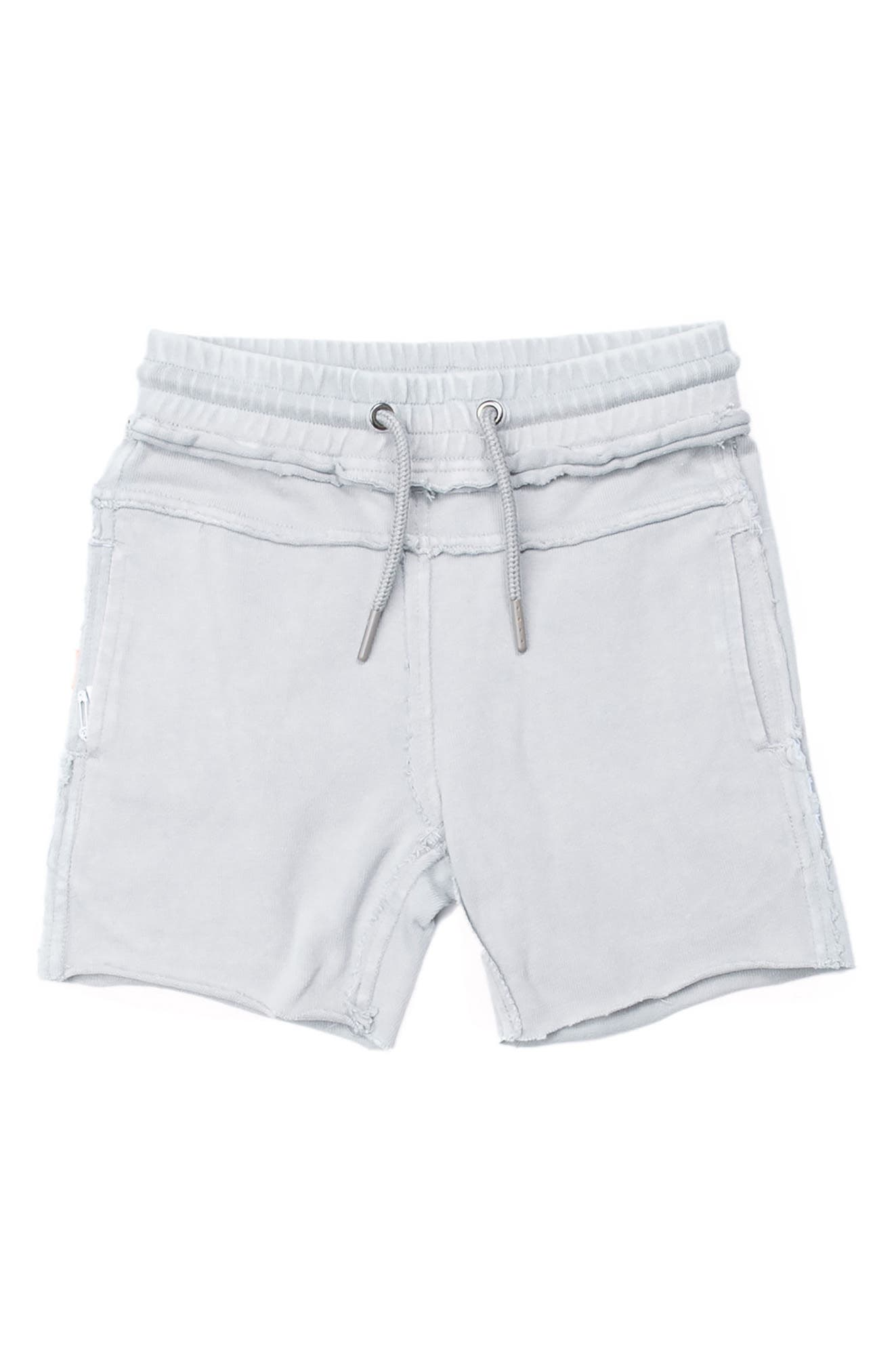 Kirk Distressed Shorts,                         Main,                         color, 020