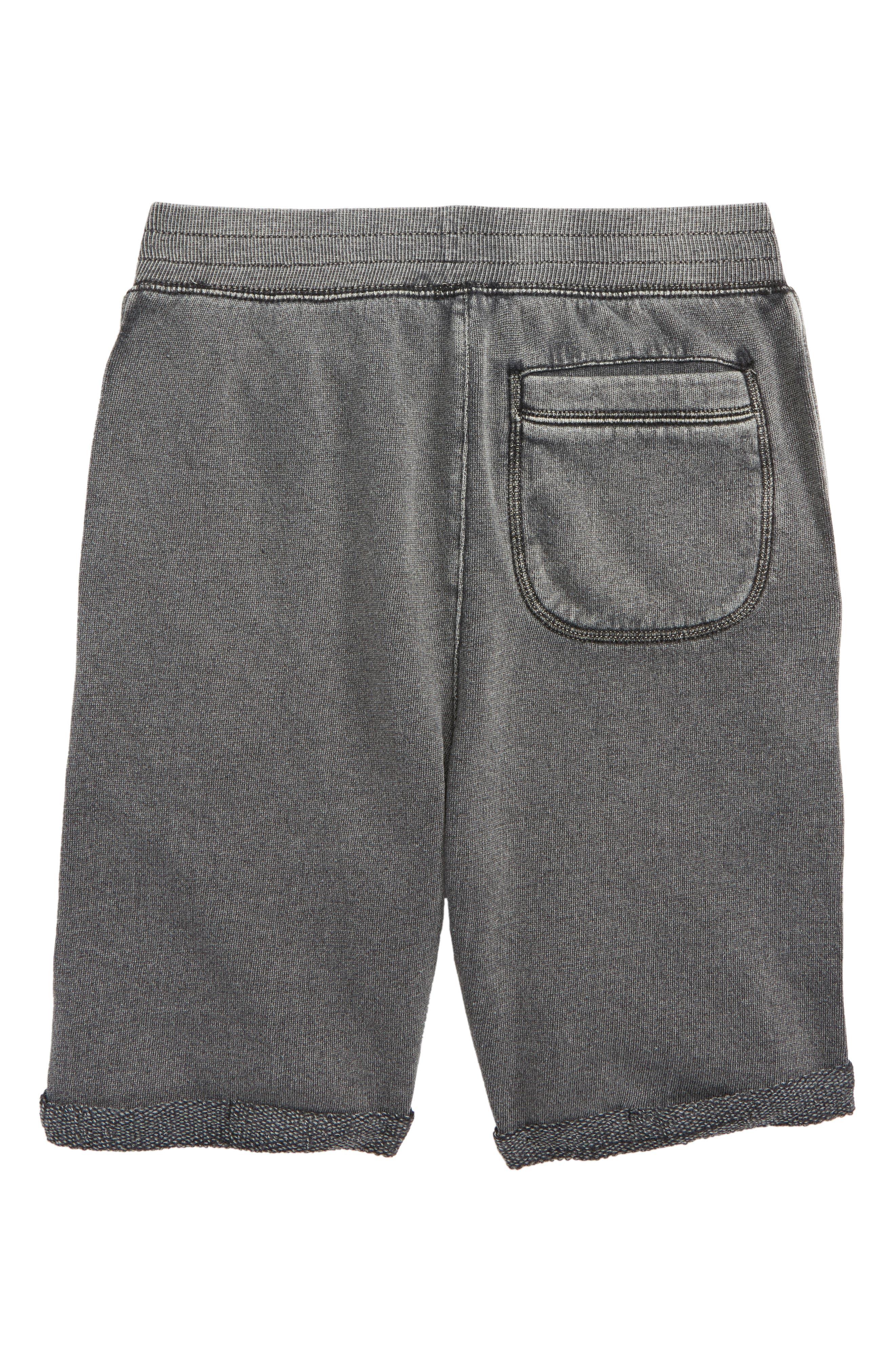 TUCKER + TATE,                             Fleece Shorts,                             Alternate thumbnail 2, color,                             001