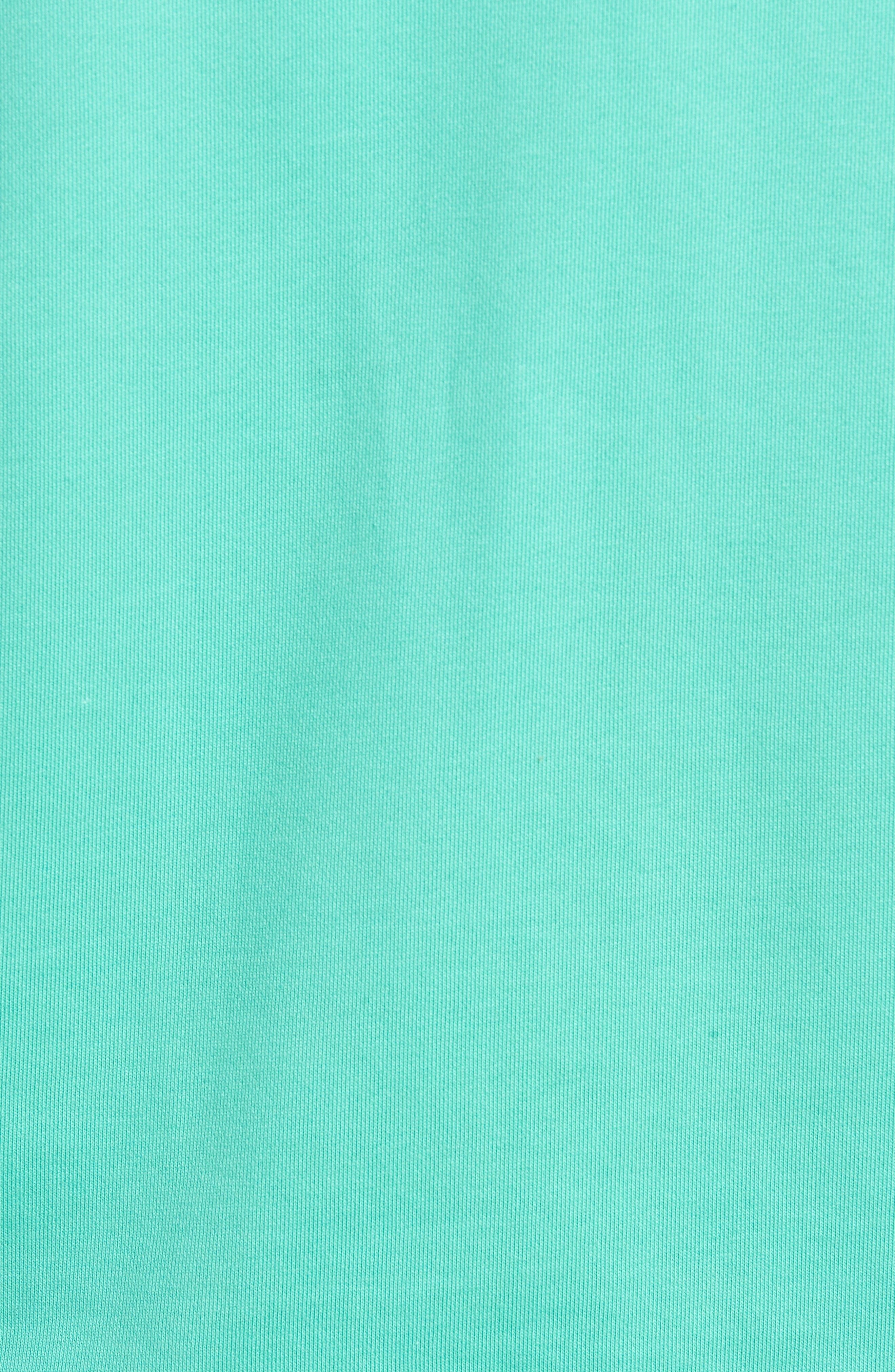 Bowery Embroidered Fleece Sweatshirt,                             Alternate thumbnail 5, color,                             SEAFOAM GREEN