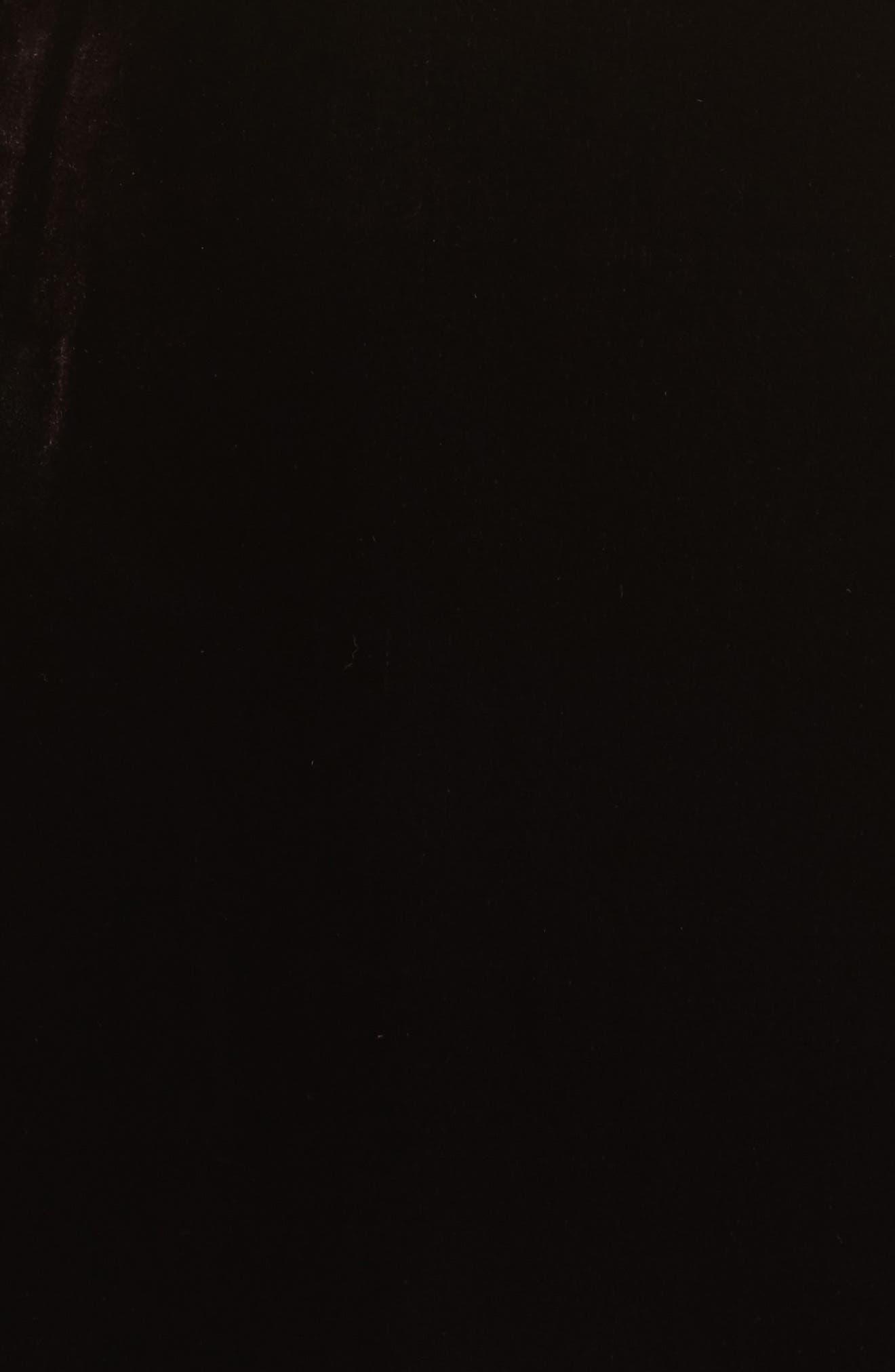 Ruffle Bodice Velvet Dress,                             Alternate thumbnail 6, color,                             933