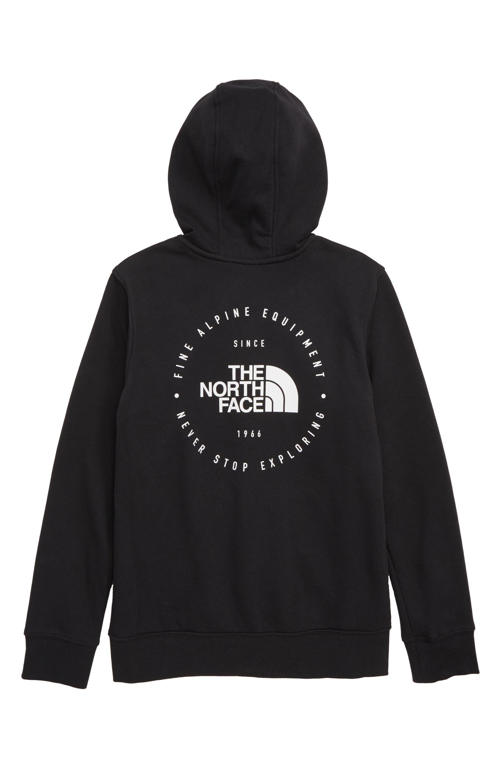 246b4803b54 The North Face Logowear Full Zip Hoodie (Big Boys)