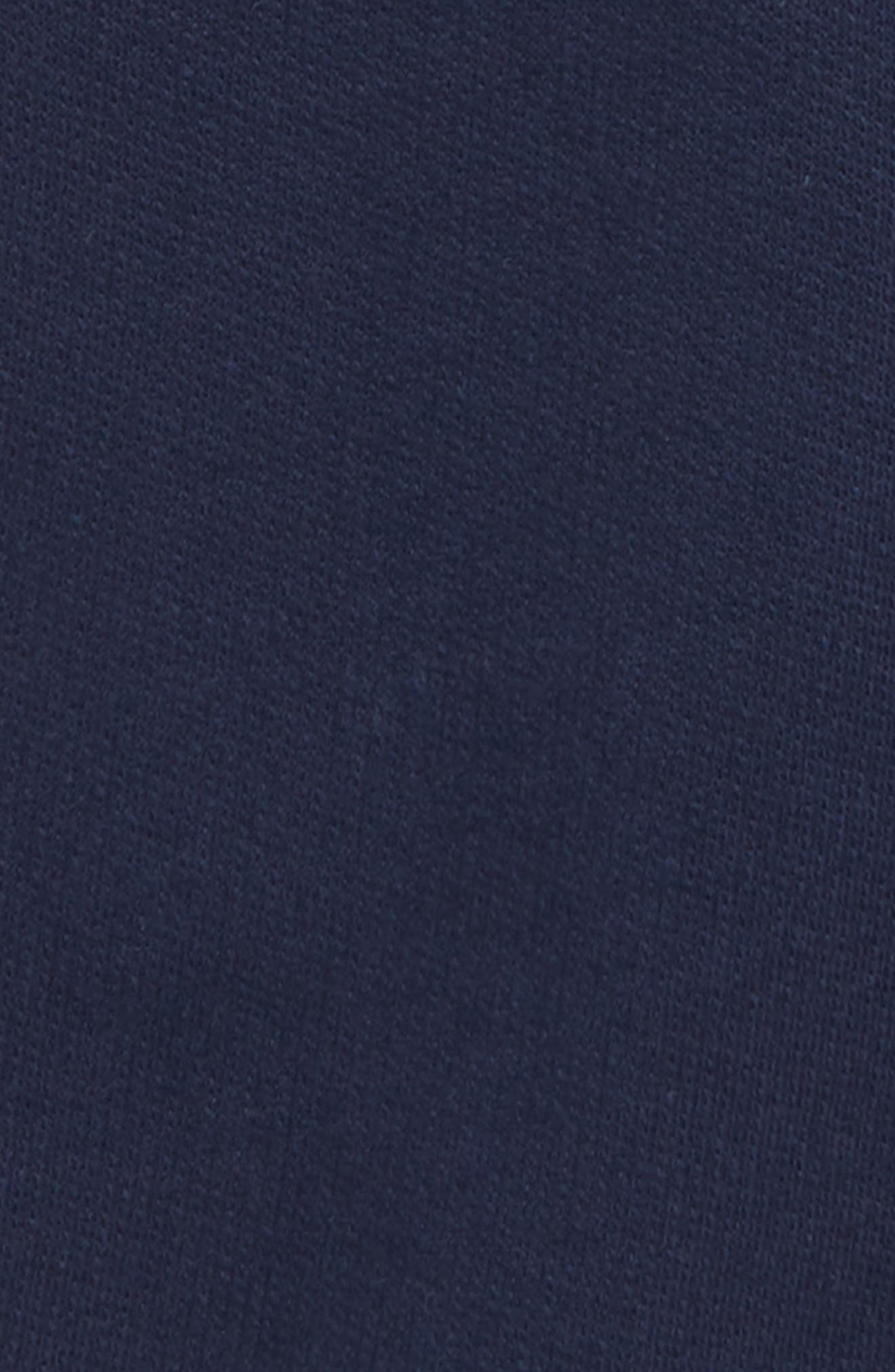 Organic Cotton Shorts,                             Alternate thumbnail 2, color,                             NAVY