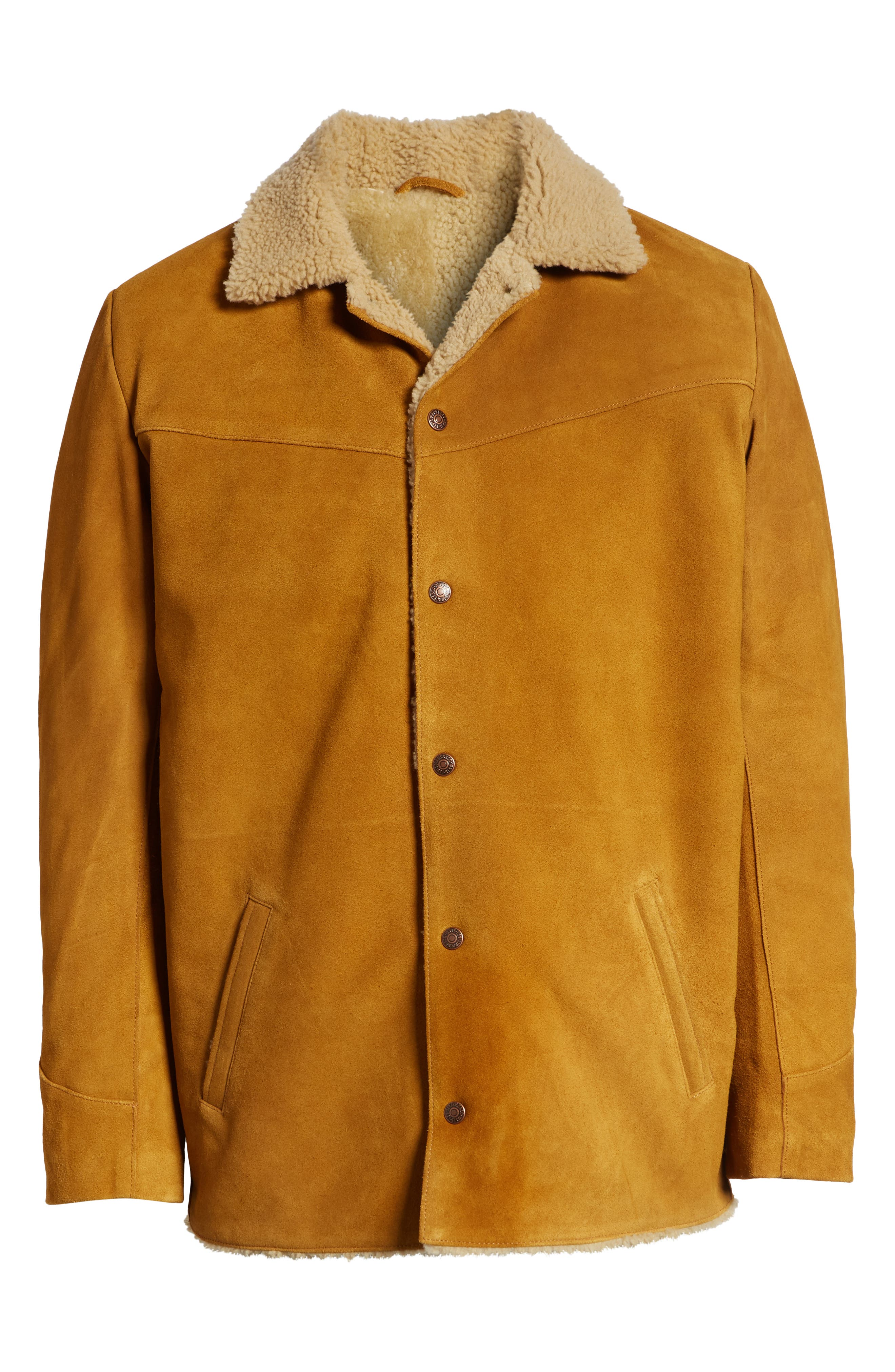 Levi's<sup>®</sup> Fleece Lined Suede Jacket,                             Alternate thumbnail 5, color,                             250