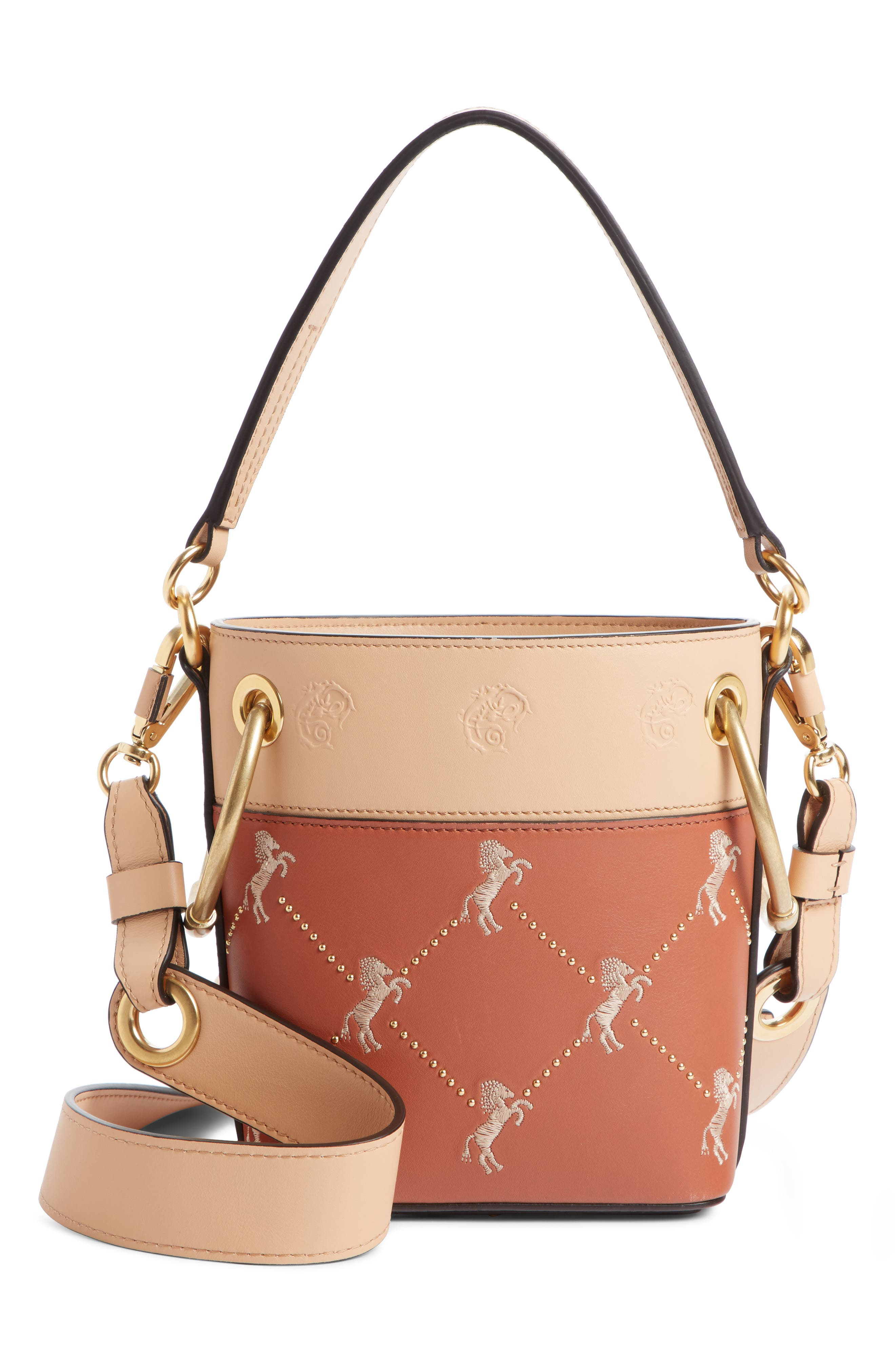 Roy Small Embroidered Leather Bucket Bag,                             Main thumbnail 1, color,                             CHESTNUT BROWN