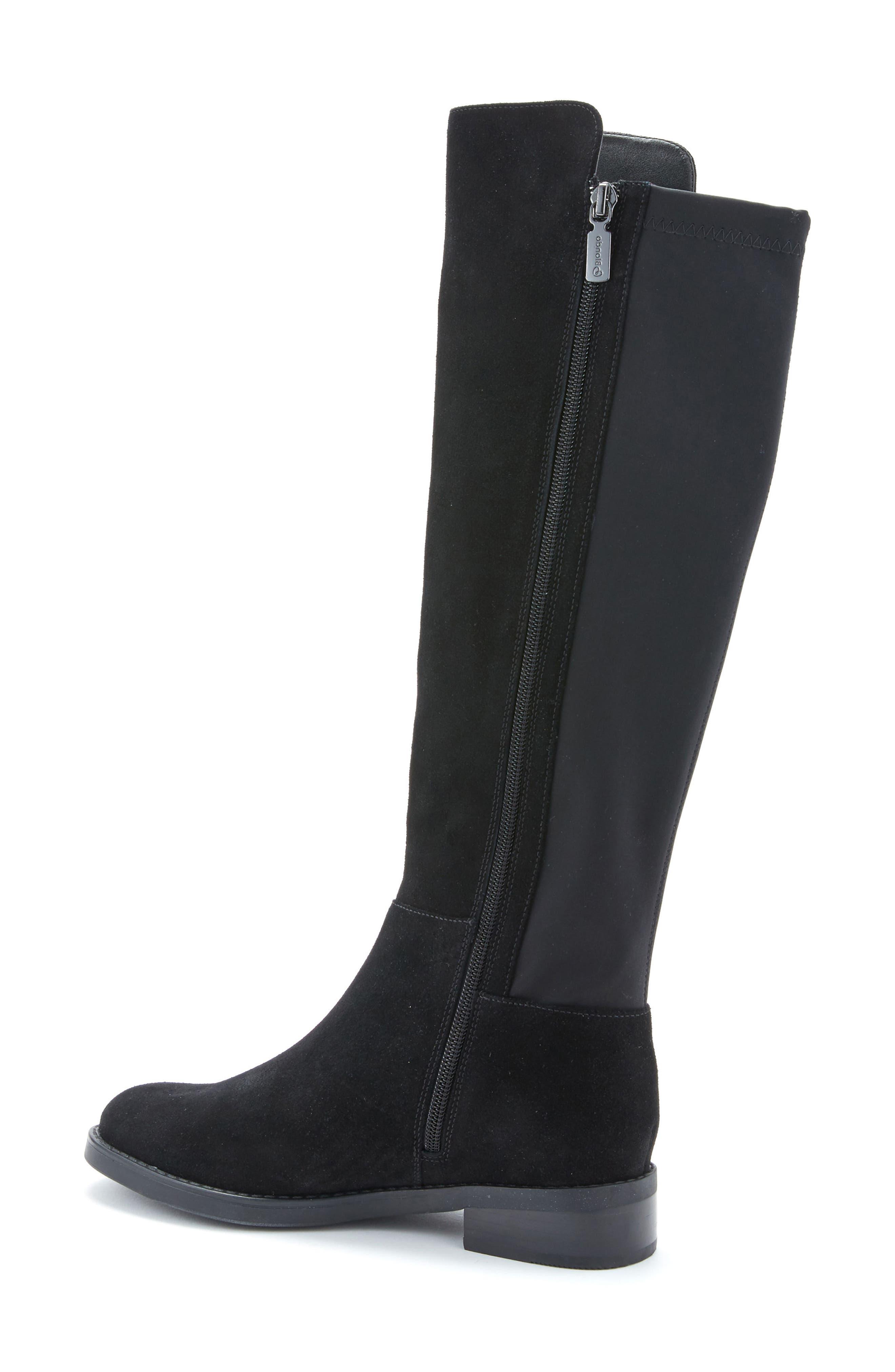 Ellie Waterproof Knee High Riding Boot,                             Alternate thumbnail 2, color,                             BLACK SUEDE