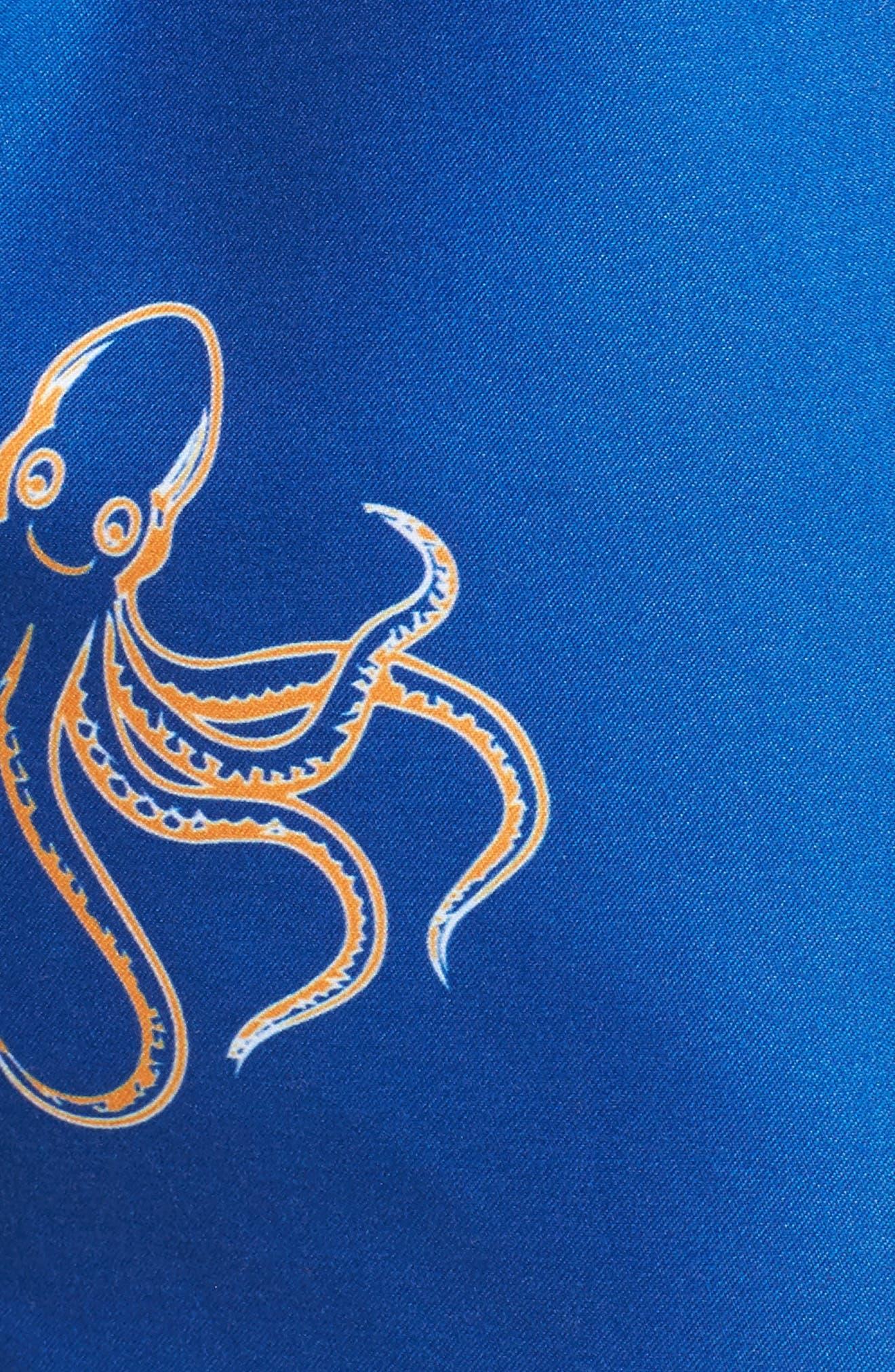 Endemic Swim Trunks,                             Alternate thumbnail 5, color,                             BLUE