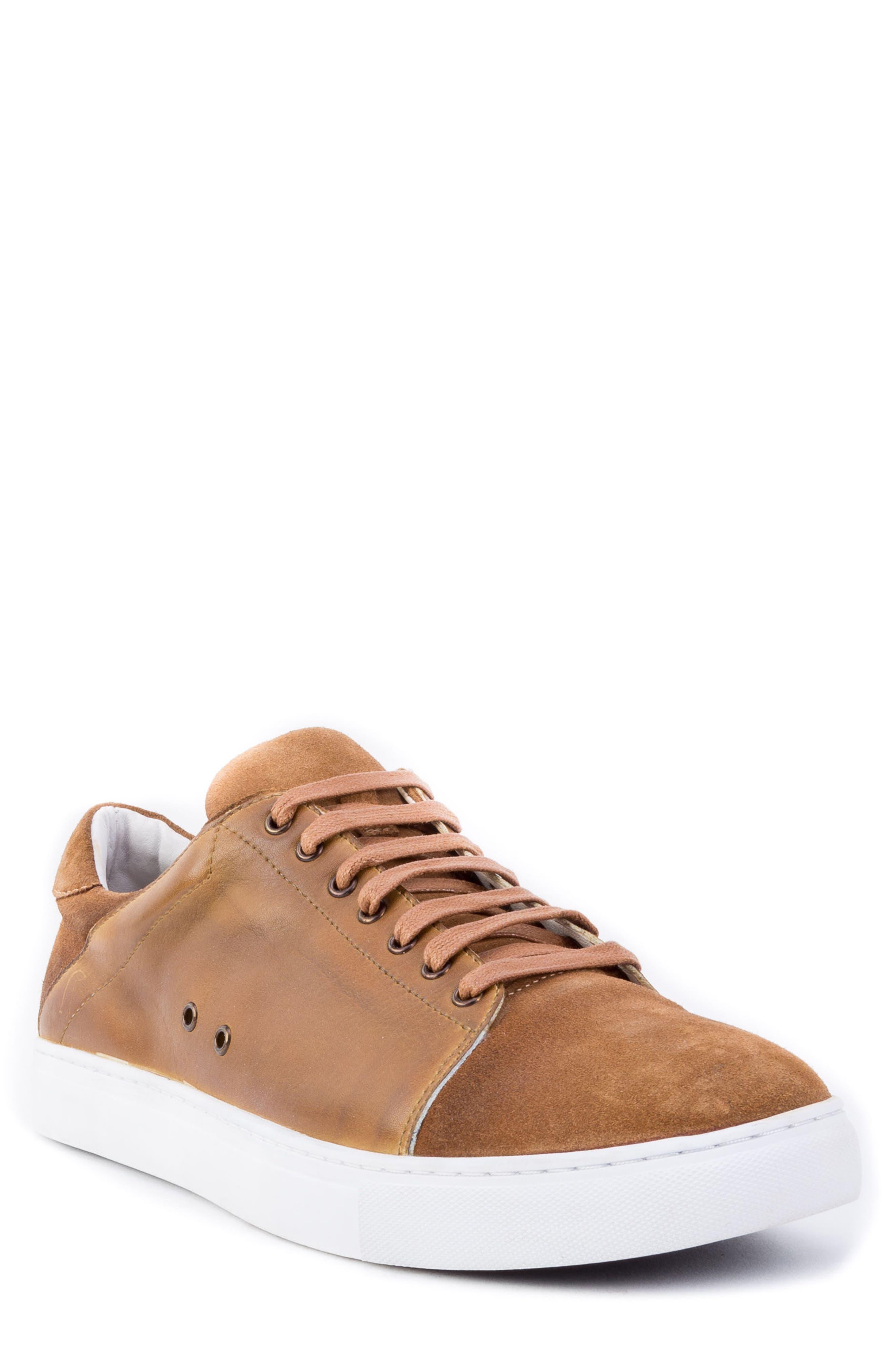 Zanzara Record Low Top Sneaker, Brown