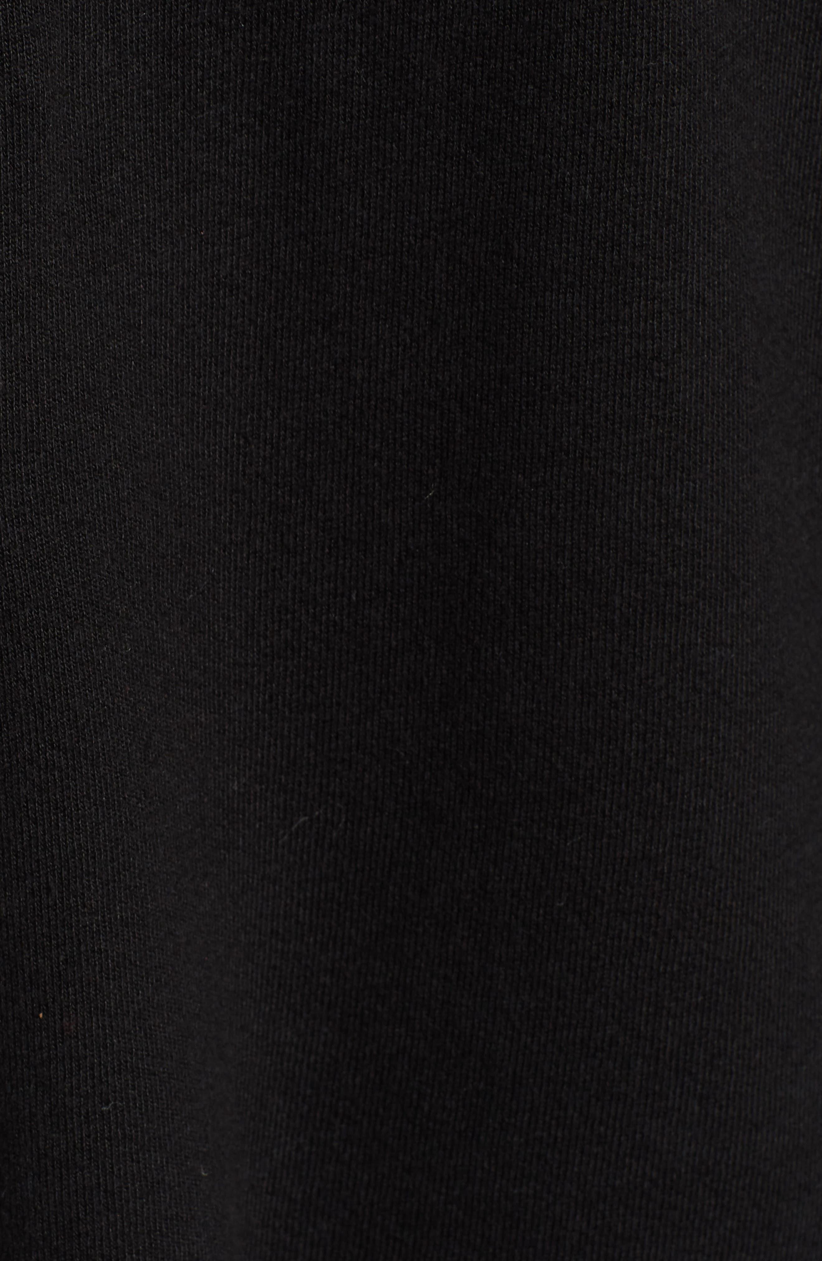 Hickory Half Zip Cotton Blend Hoodie,                             Alternate thumbnail 5, color,                             BLACK CAT