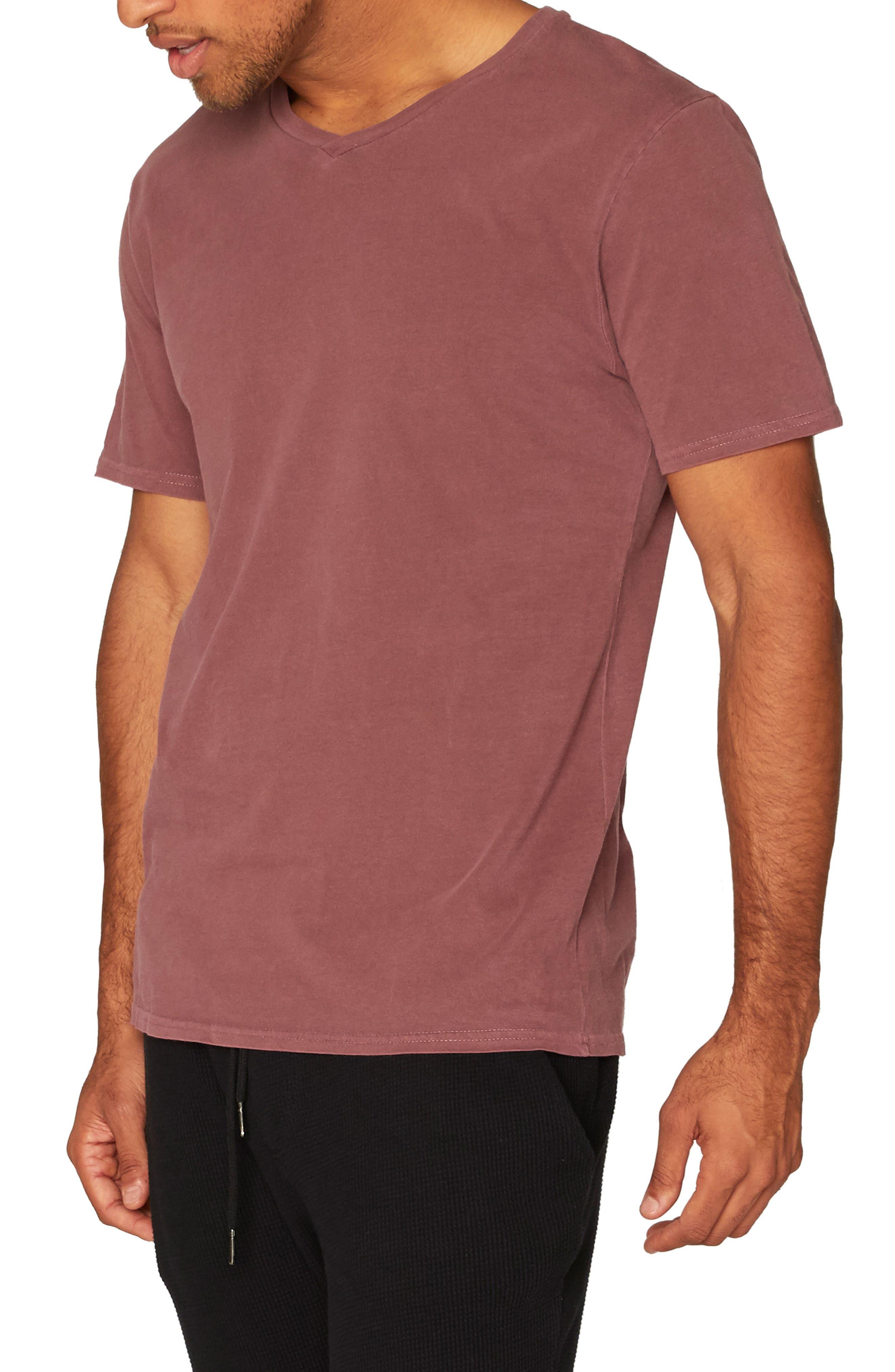 Standard V-Neck T-Shirt,                             Alternate thumbnail 18, color,