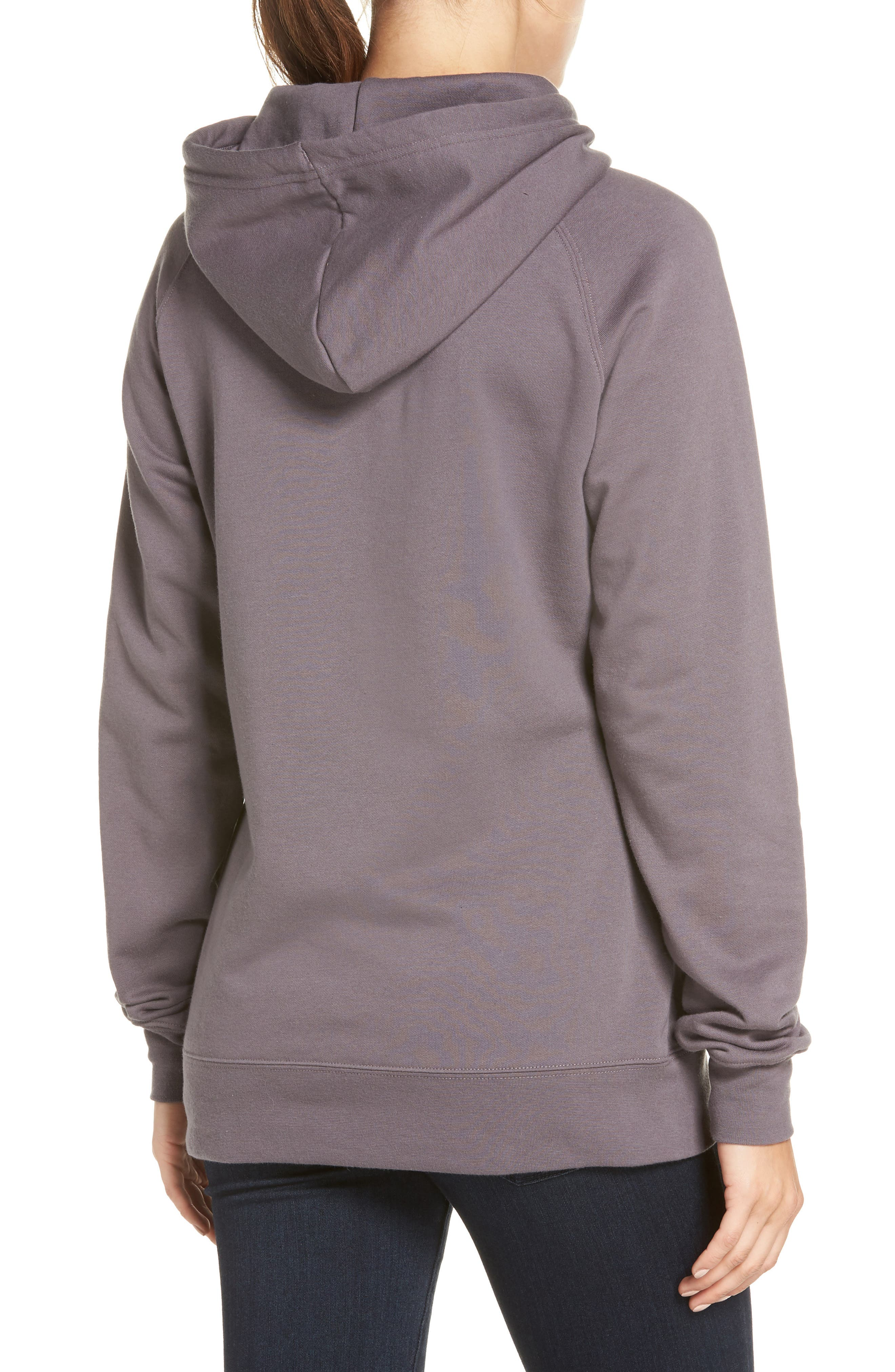 THE NORTH FACE,                             Edge to Edge Logo Hoodie Sweatshirt,                             Alternate thumbnail 2, color,                             023