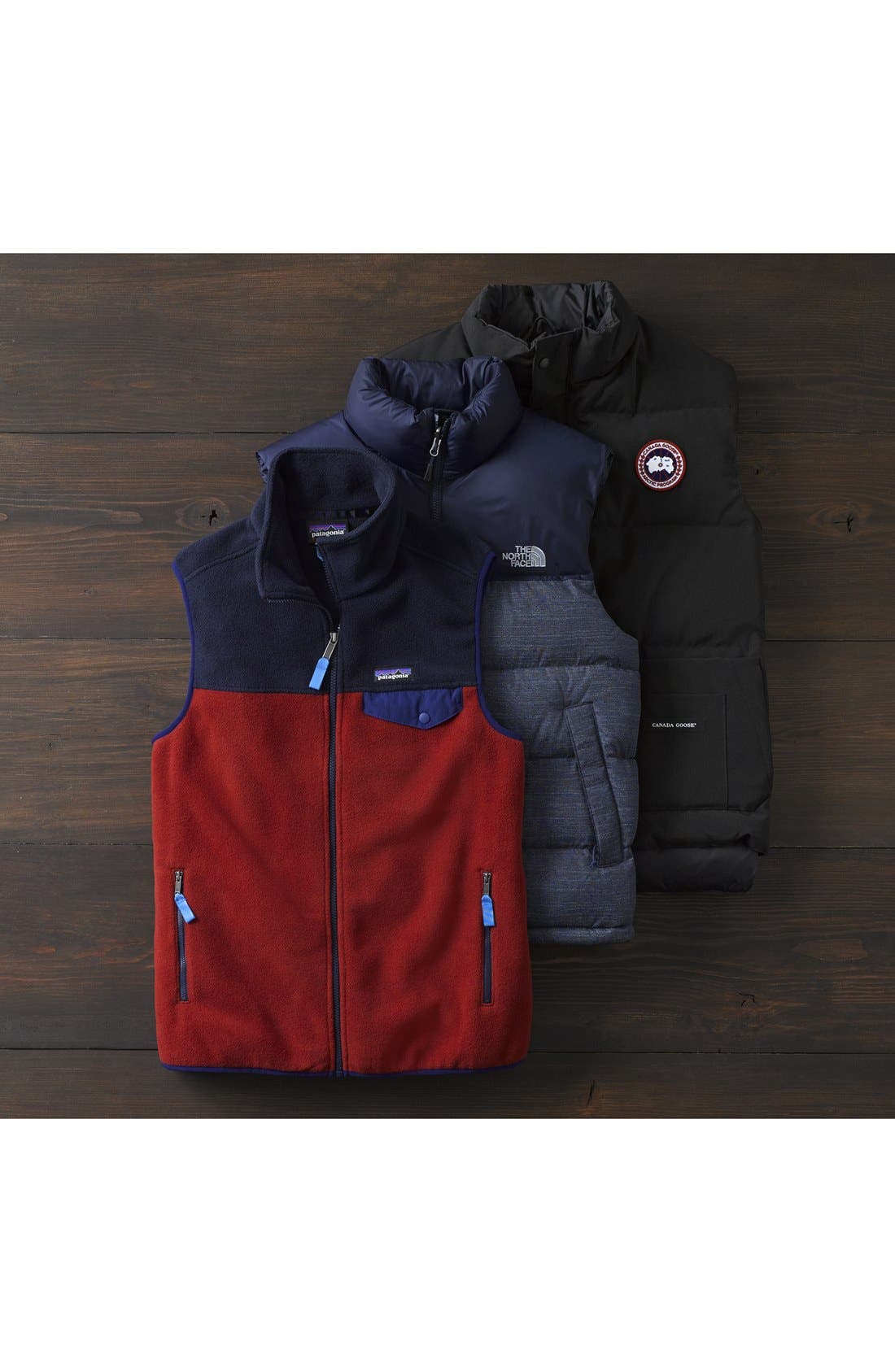 PATAGONIA,                             Synchilla<sup>®</sup>Snap-T<sup>®</sup> Zip FleeceVest,                             Alternate thumbnail 8, color,                             201