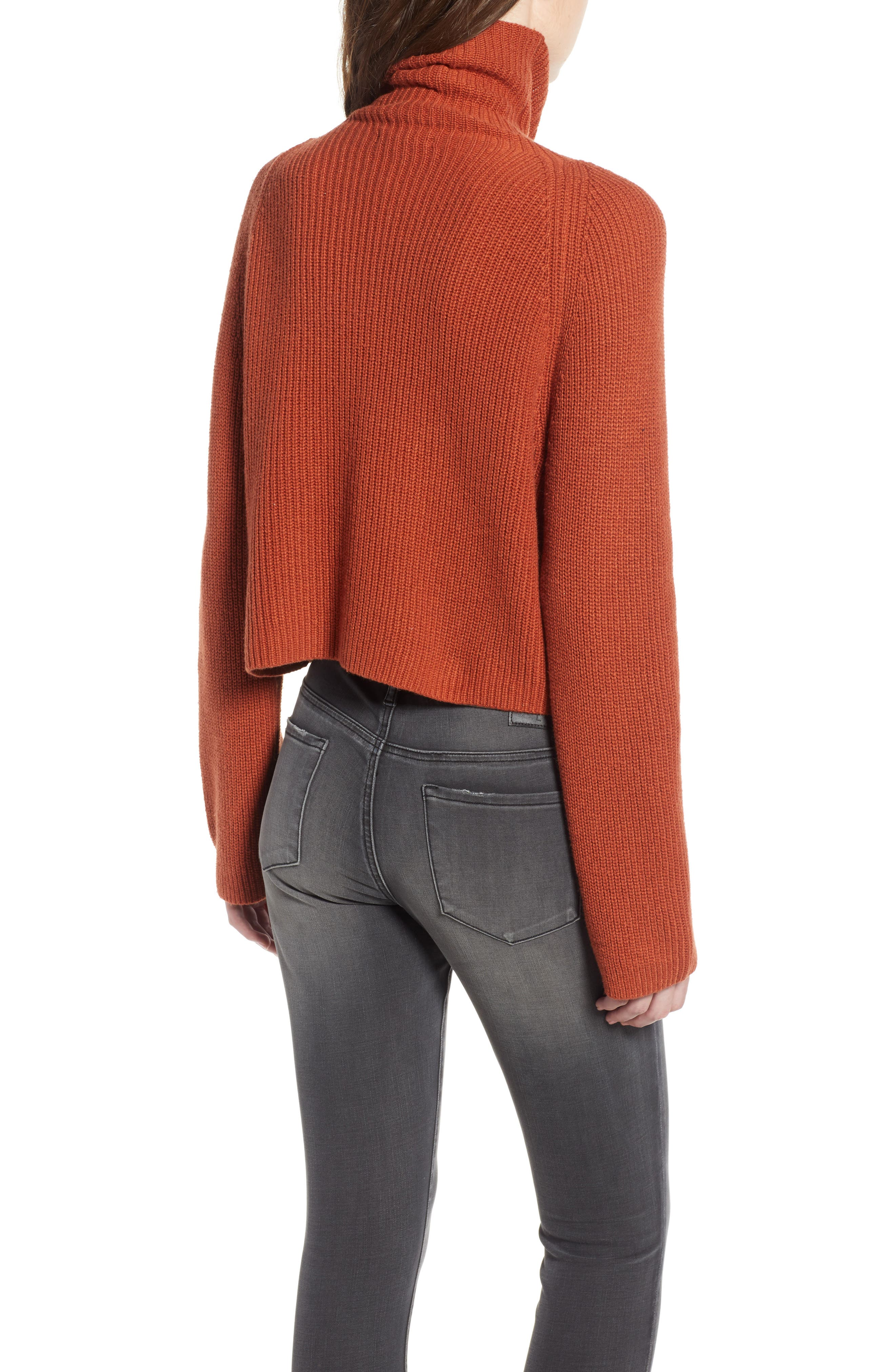 LEITH, Transfer Stitch Turtleneck Sweater, Alternate thumbnail 2, color, 210