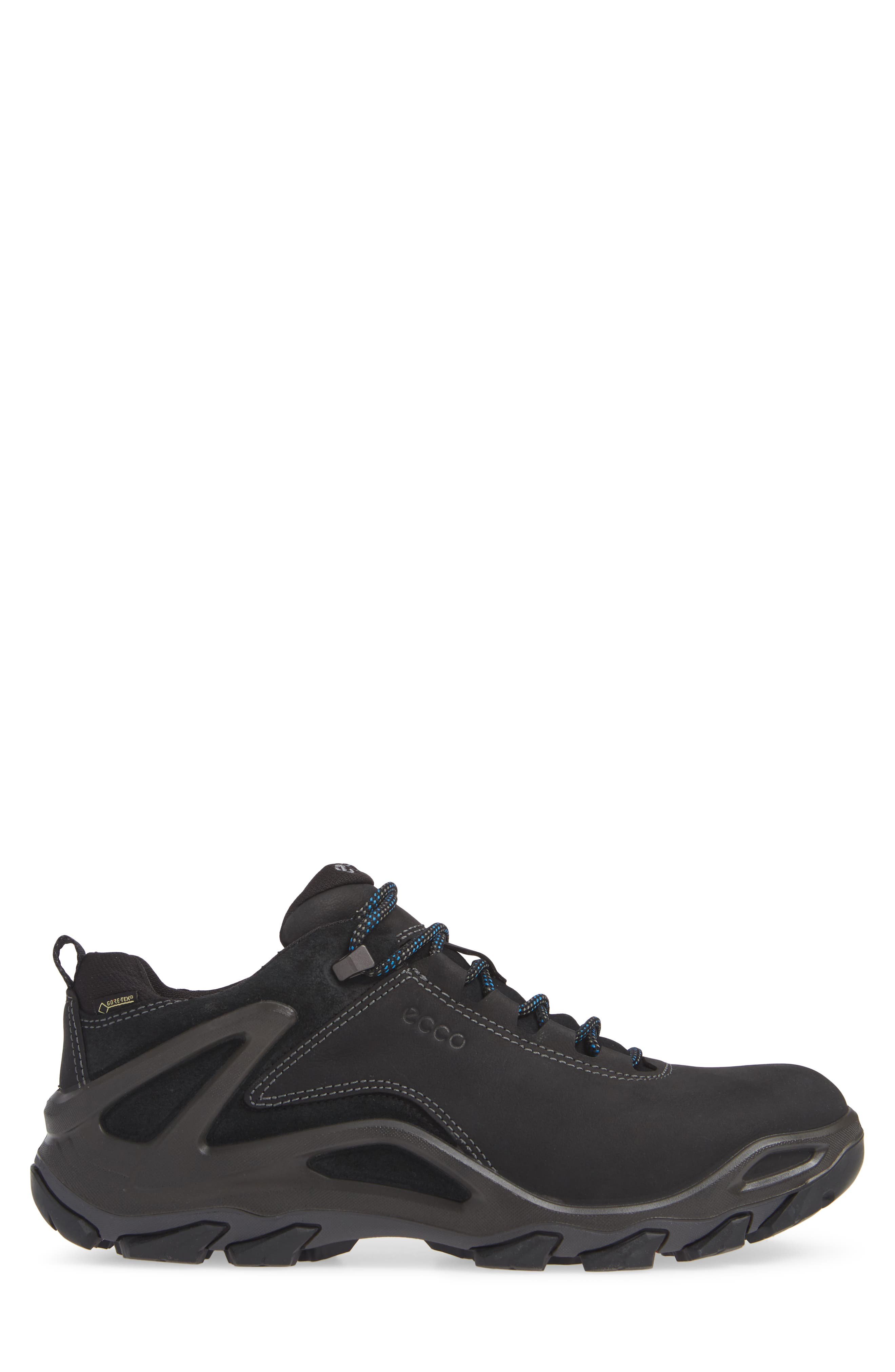 Terra Evo GTX Low Hiking Shoe,                             Alternate thumbnail 3, color,                             009
