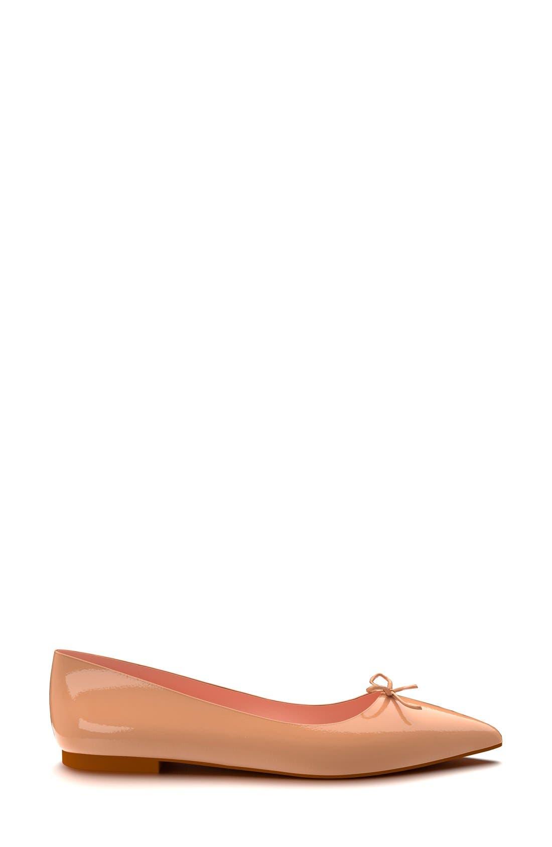 Pointy Toe Ballet Flat,                             Alternate thumbnail 3, color,                             250