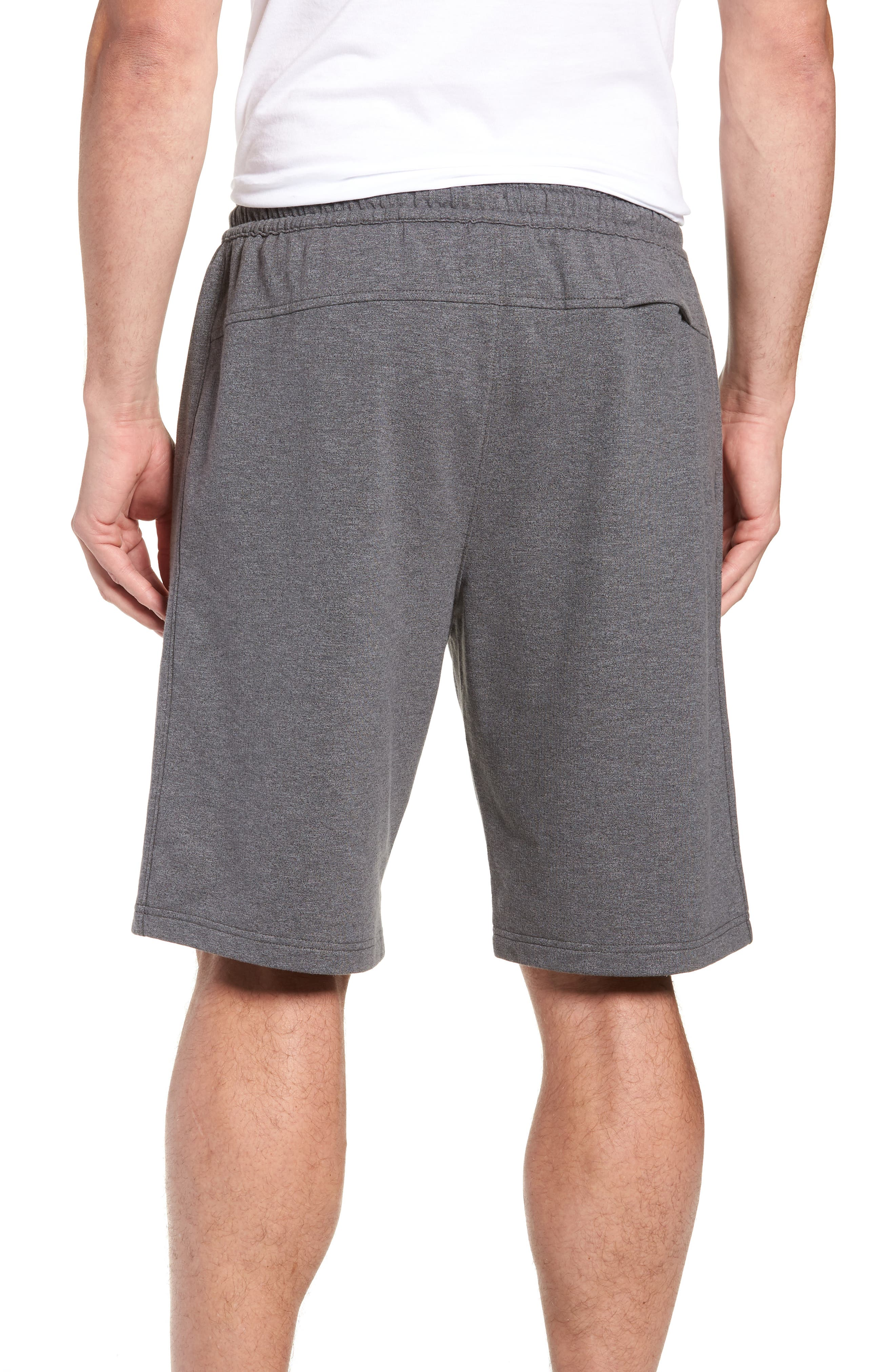 Arcanite Knit Shorts,                             Alternate thumbnail 2, color,                             021